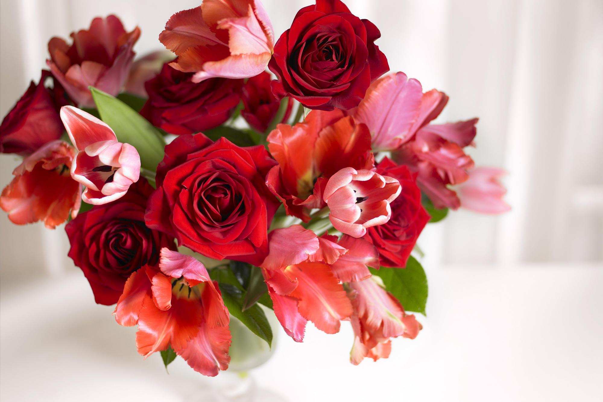 17496 скачать обои Растения, Цветы, Розы, Тюльпаны - заставки и картинки бесплатно