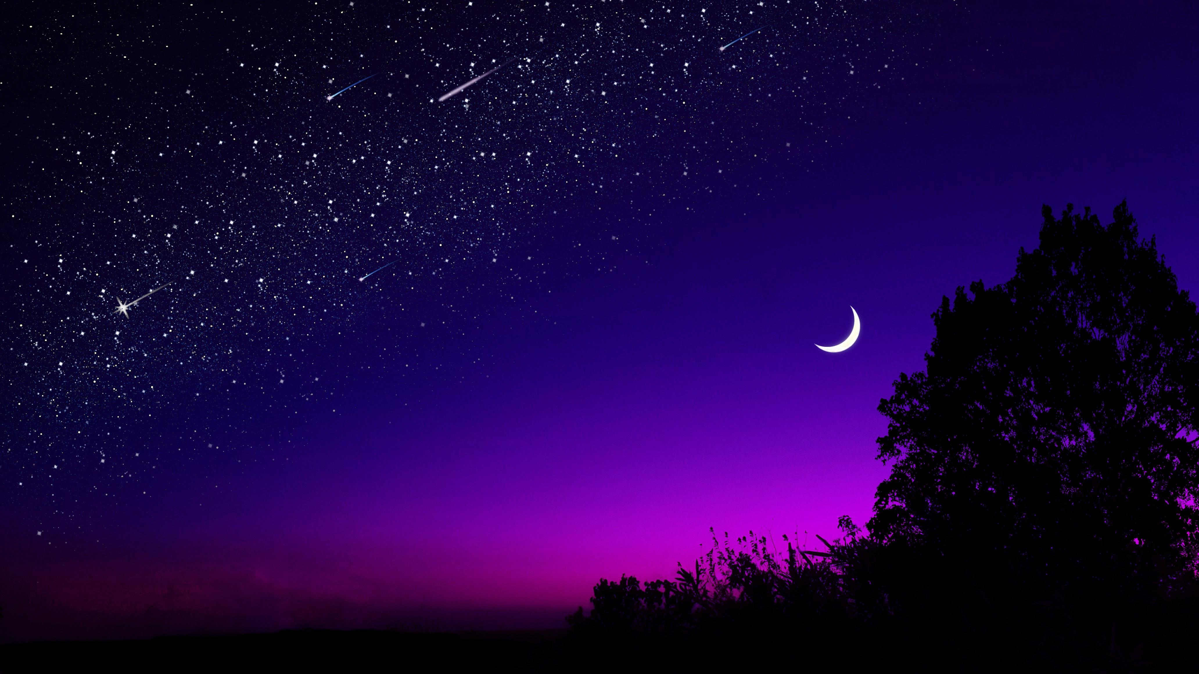 144283 Protetores de tela e papéis de parede Lua em seu telefone. Baixe Noite, Escuro, Estrelas, Lua, Madeira, Árvore, Céu Estrelado fotos gratuitamente
