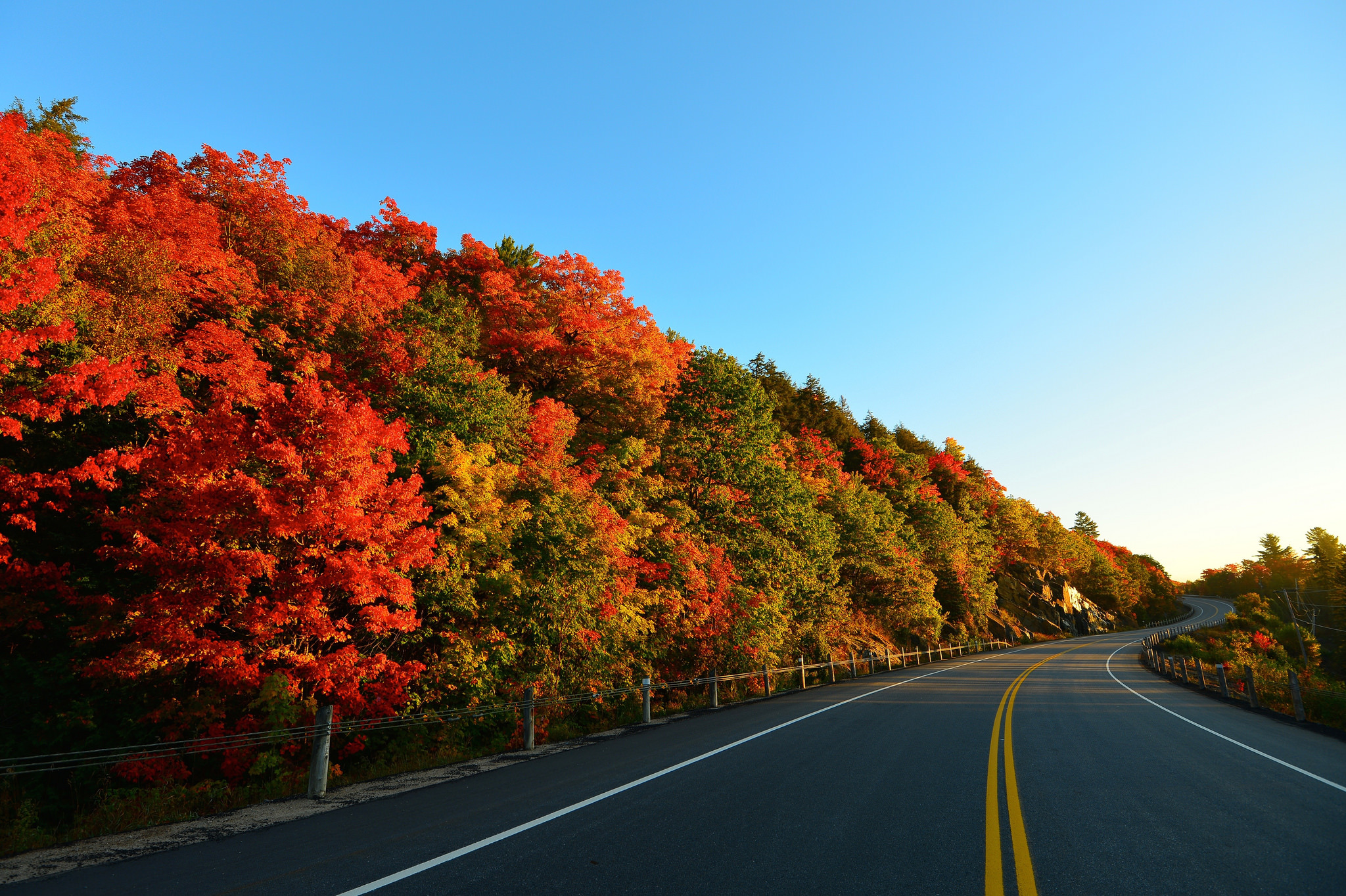 75841 Screensavers and Wallpapers Markup for phone. Download Nature, Trees, Autumn, Road, Turn, Markup pictures for free