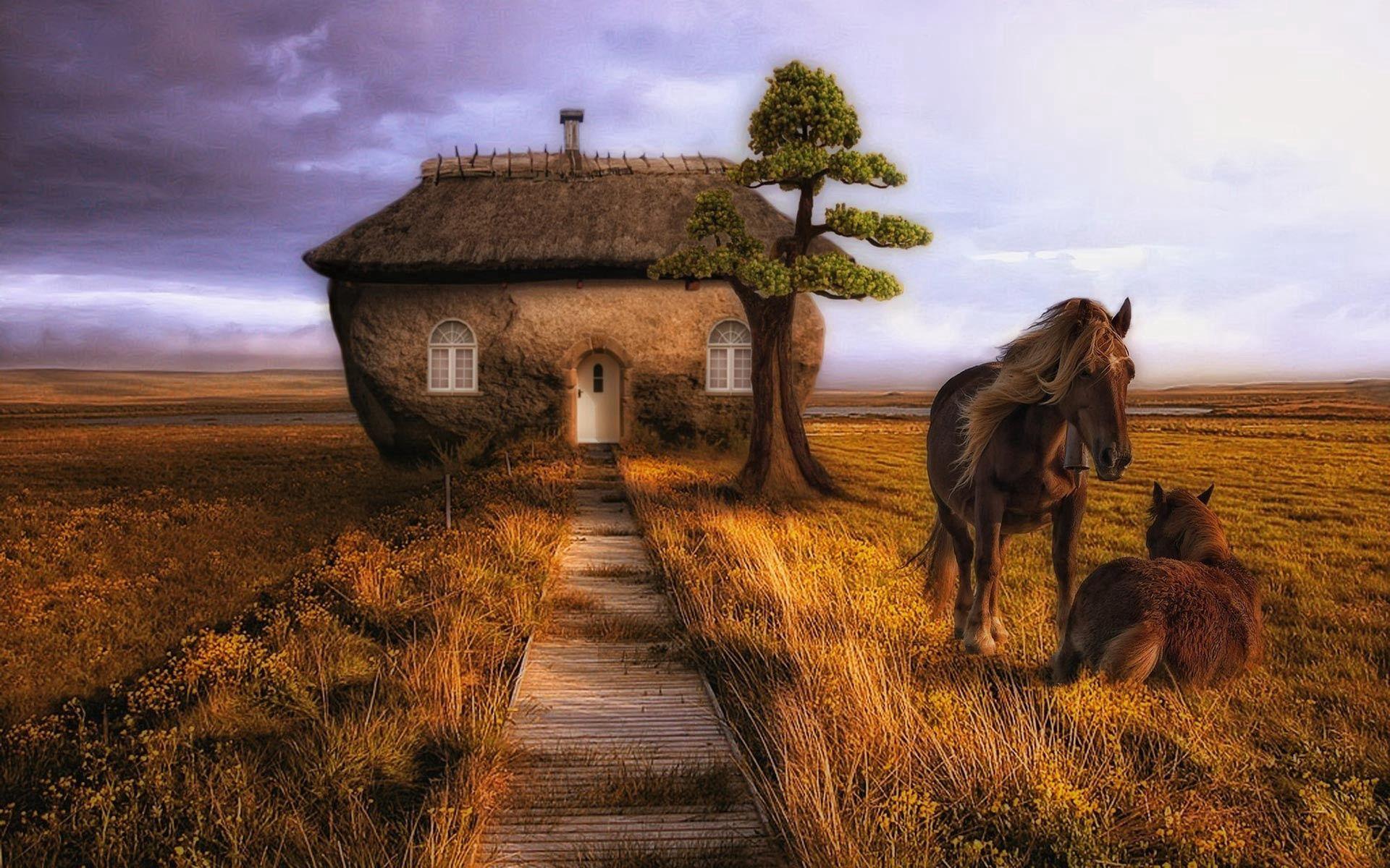 60138 скачать обои Животные, Лошади, Пара, Здание, Деревья, Трава - заставки и картинки бесплатно