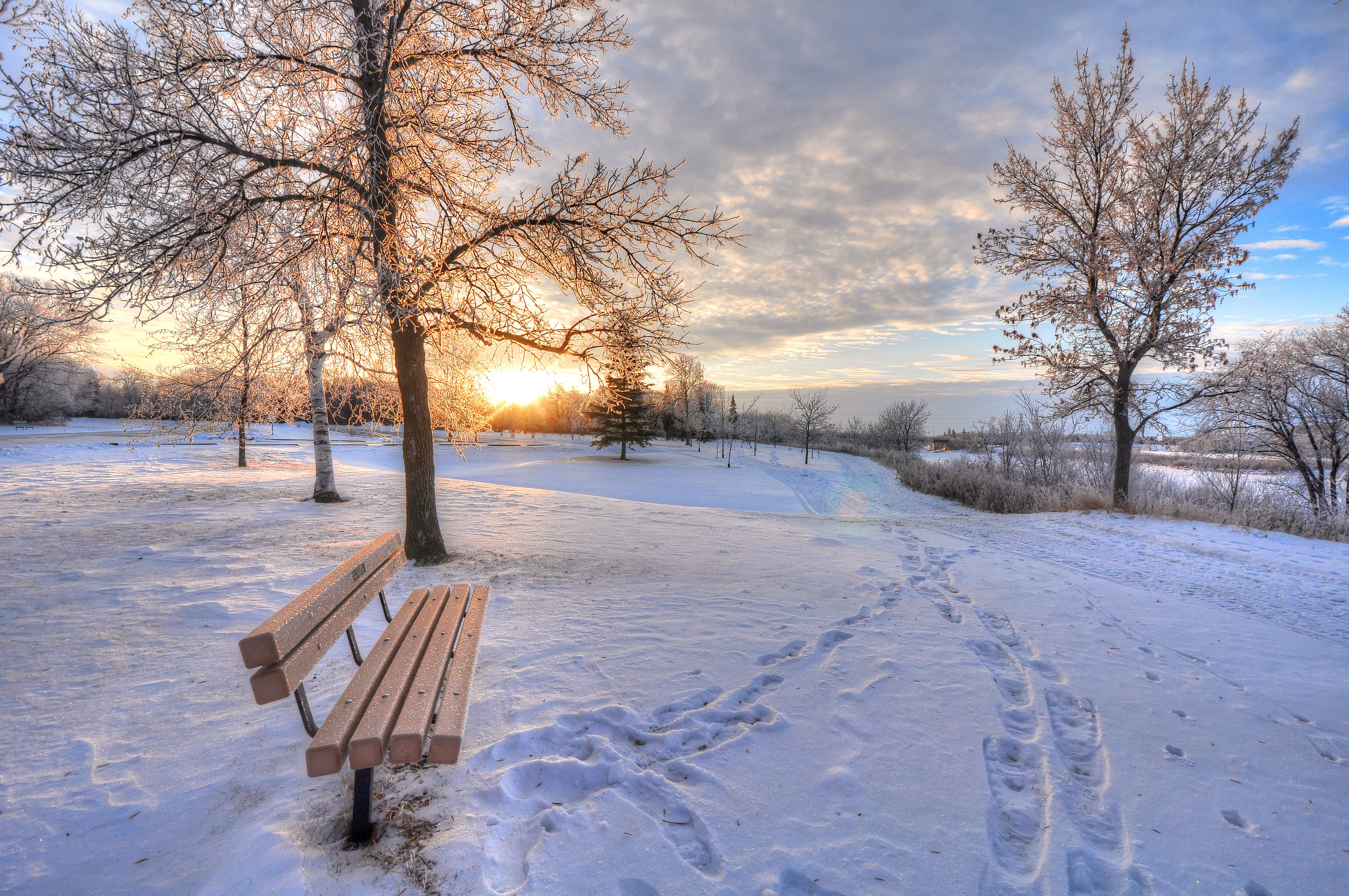 143326 Screensavers and Wallpapers Bench for phone. Download Bench, Snow, Winter, Nature, Dawn, Traces pictures for free