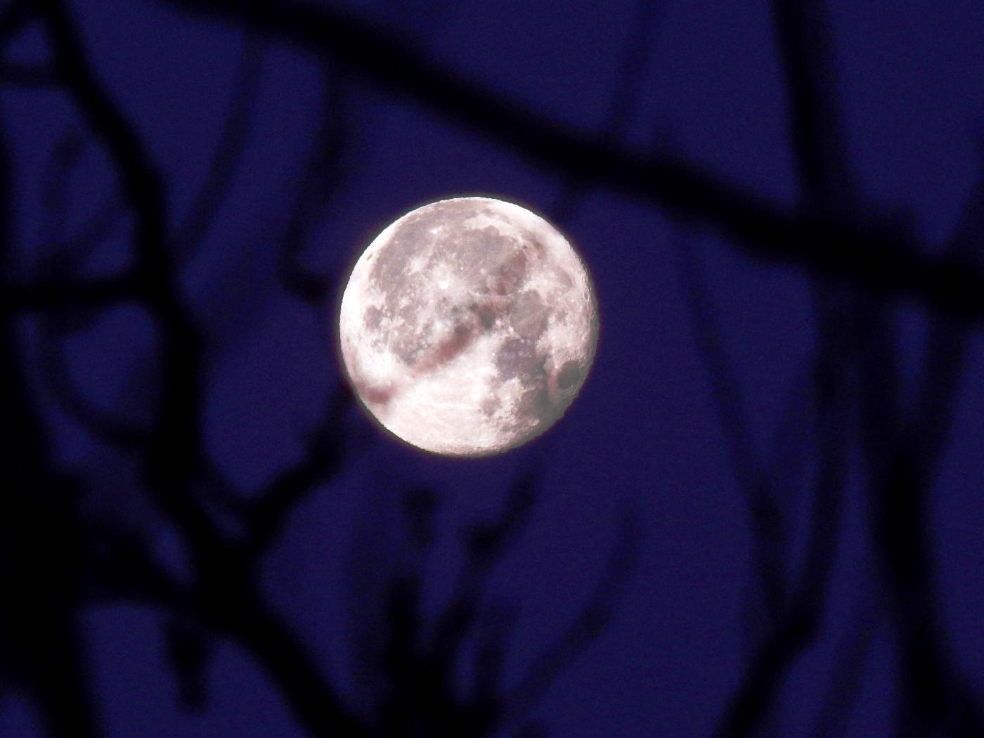 46057 скачать обои Пейзаж, Луна - заставки и картинки бесплатно