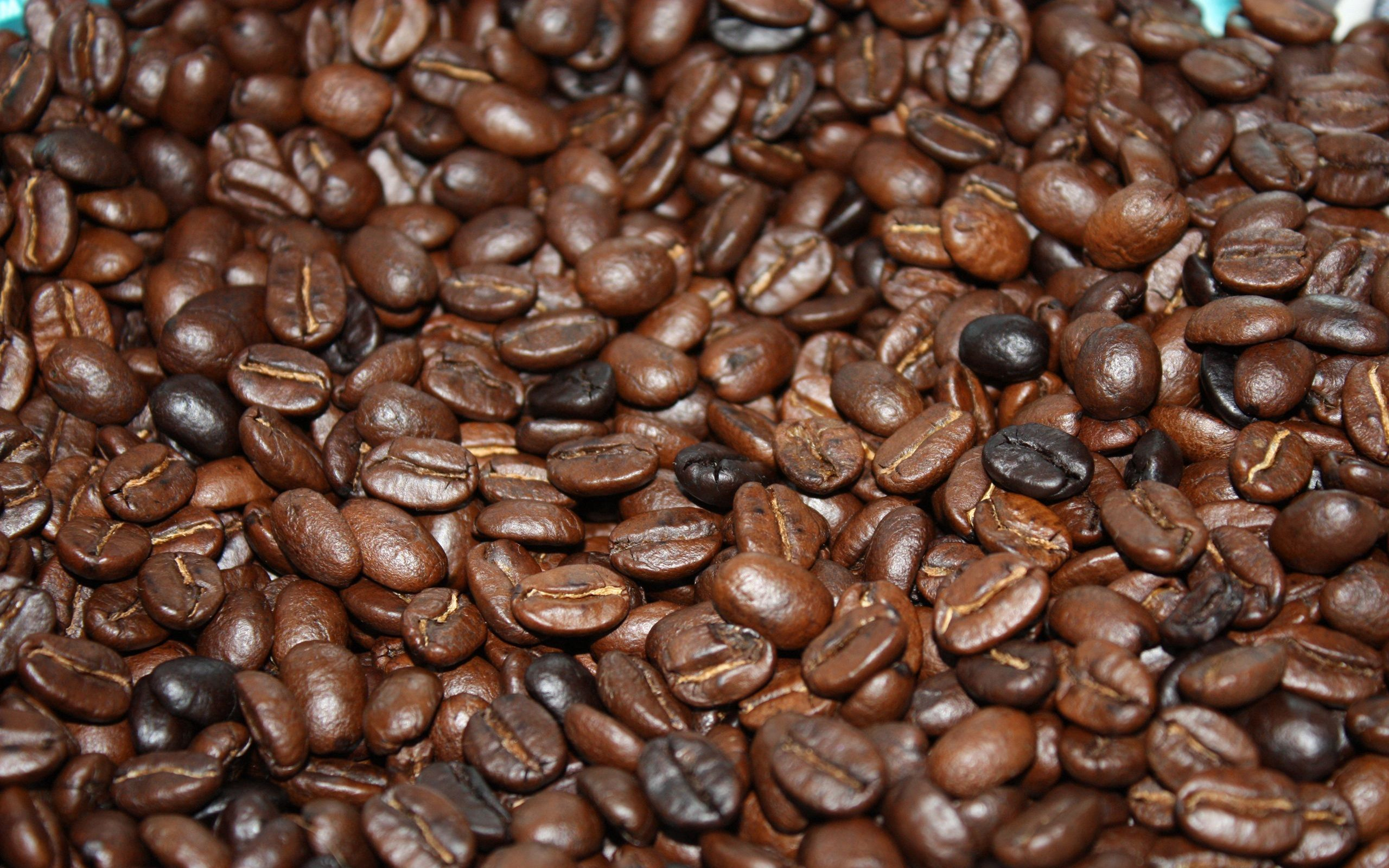 Free wallpaper 149937: Food, Coffee, Grains, Grain, Fried download pictures for cellphone