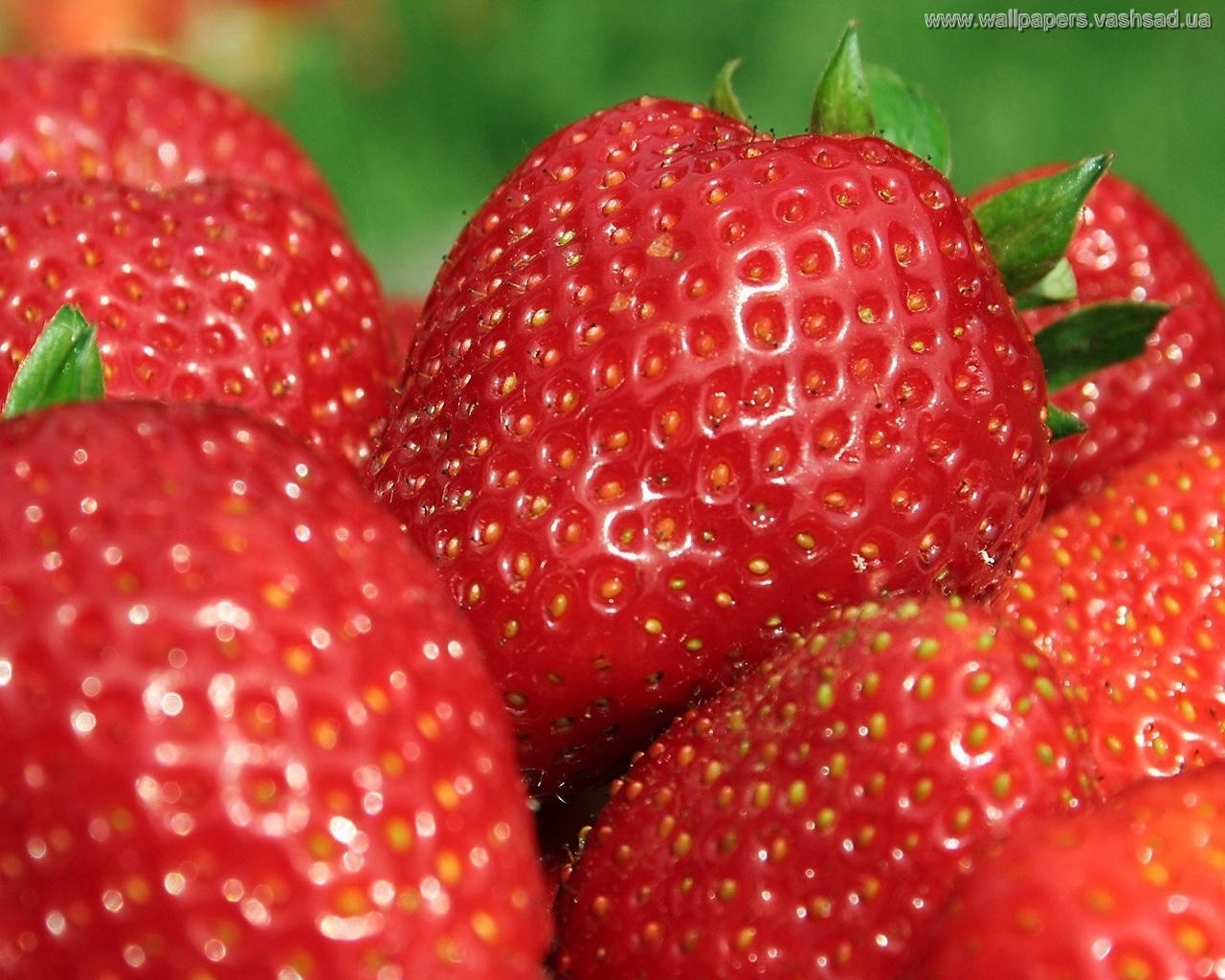 6432 download wallpaper Food, Strawberry, Berries screensavers and pictures for free
