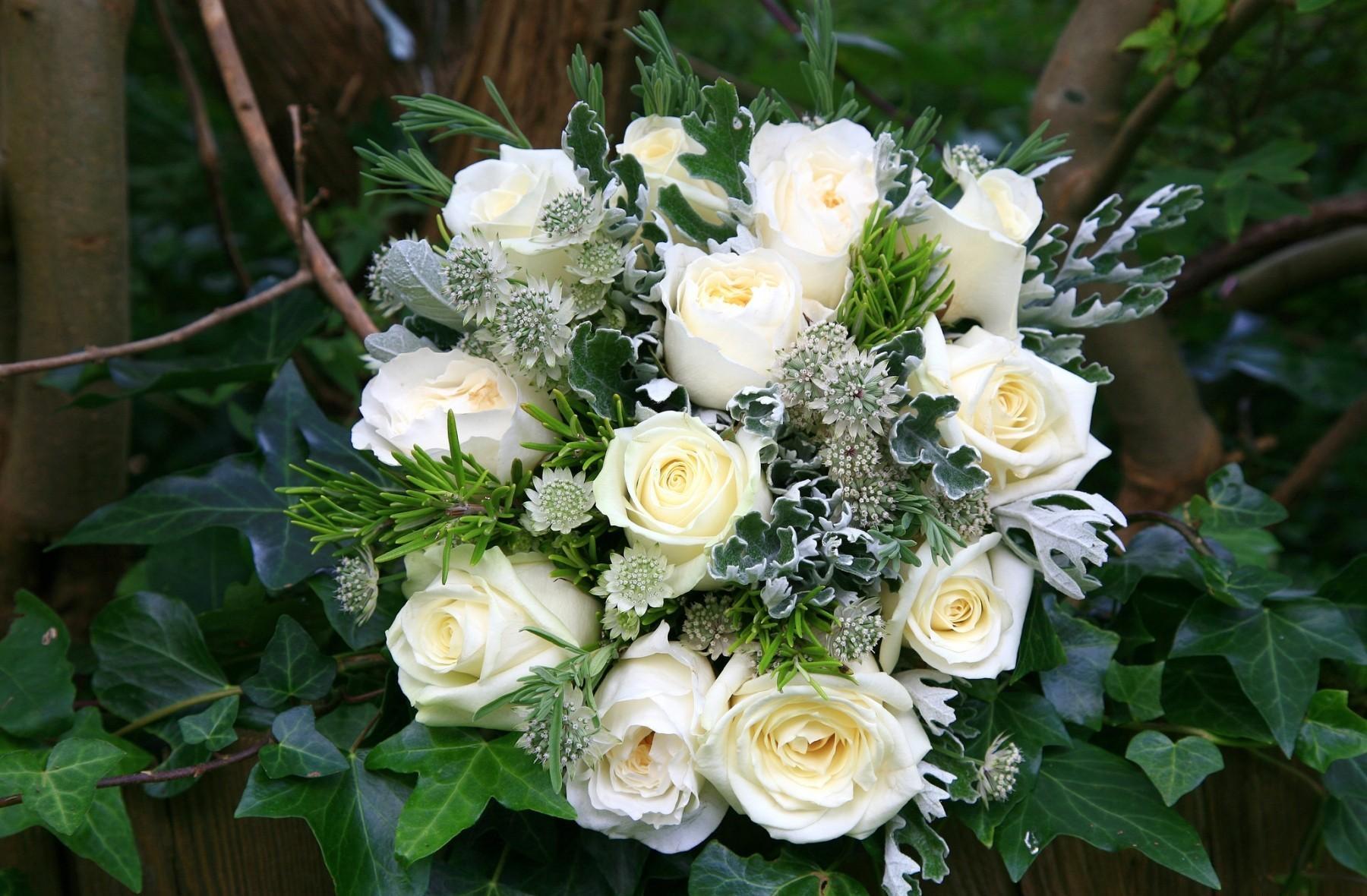 82927 скачать обои Розы, Оформление, Букет, Цветы, Зелень, Белоснежные - заставки и картинки бесплатно