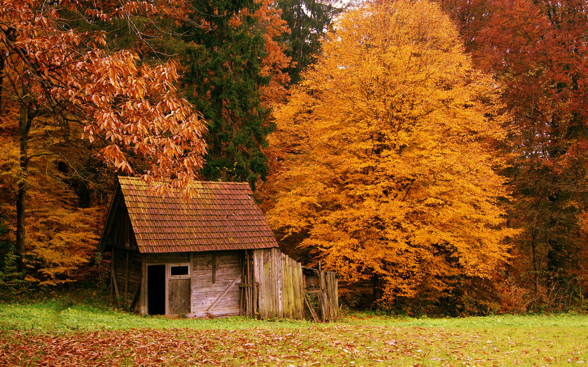 33956 download wallpaper Landscape, Houses, Autumn screensavers and pictures for free