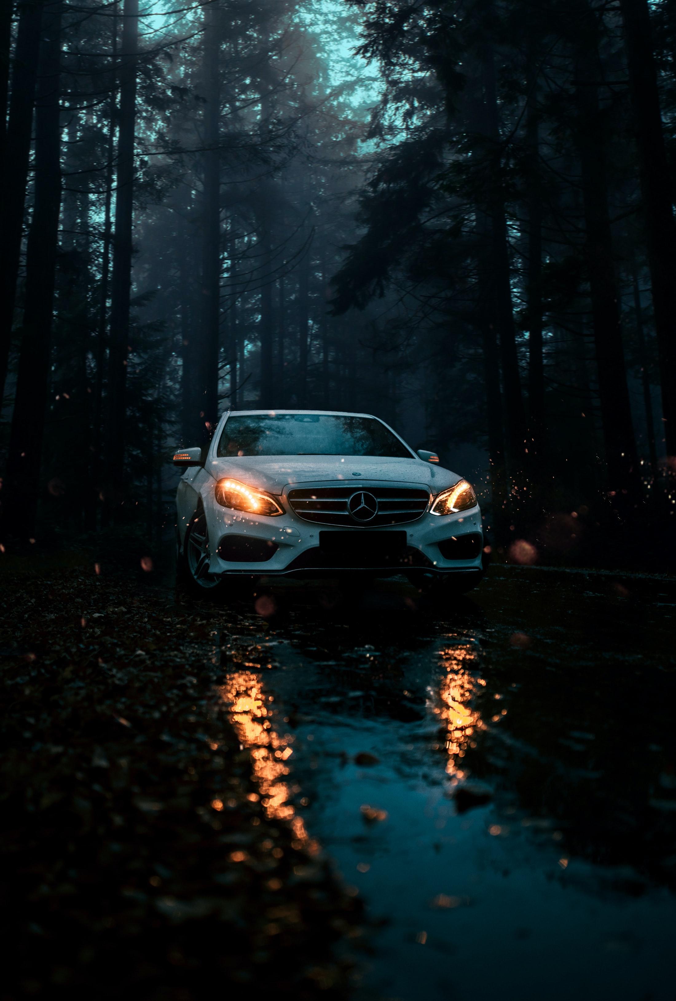 113845 Hintergrundbild herunterladen Auto, Mercedes, Cars, Wald, Wagen, Vorderansicht, Frontansicht - Bildschirmschoner und Bilder kostenlos