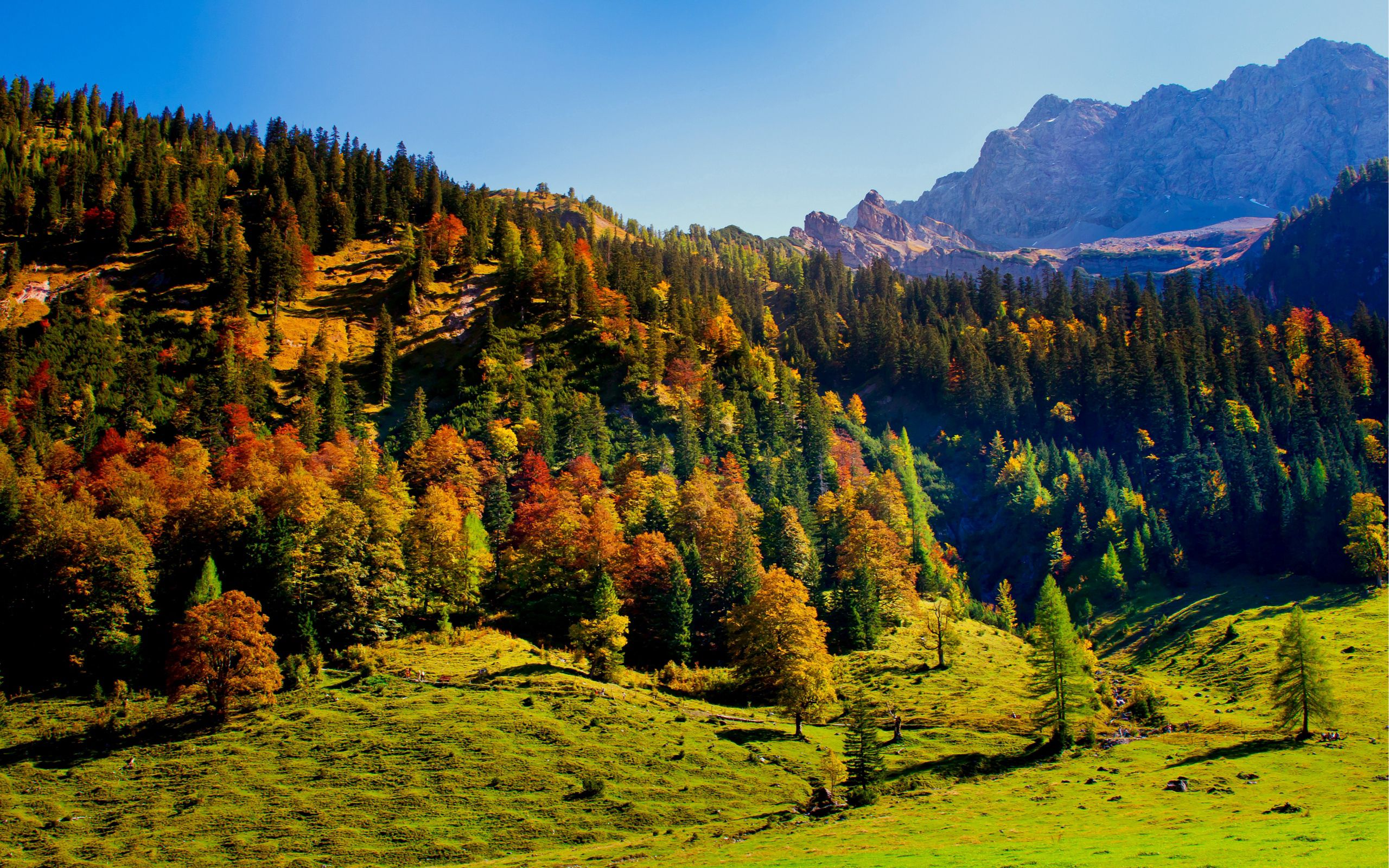 Download mobile wallpaper Landscape, Nature, Mountains, Forest, Relief, Hills, Freshness, Shadows, Air for free.
