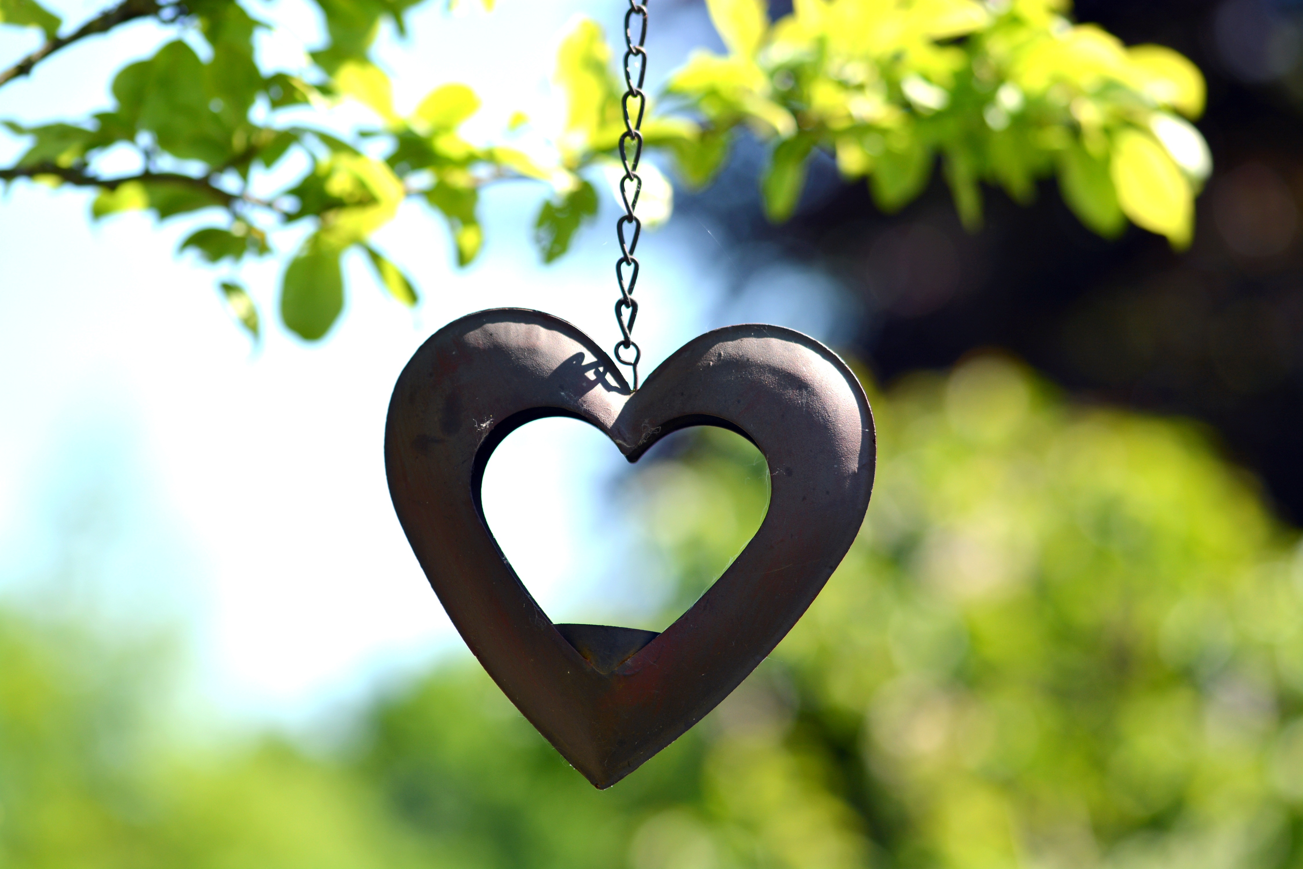 63810 download wallpaper Love, Heart, Suspension, Blur, Smooth, Chain screensavers and pictures for free
