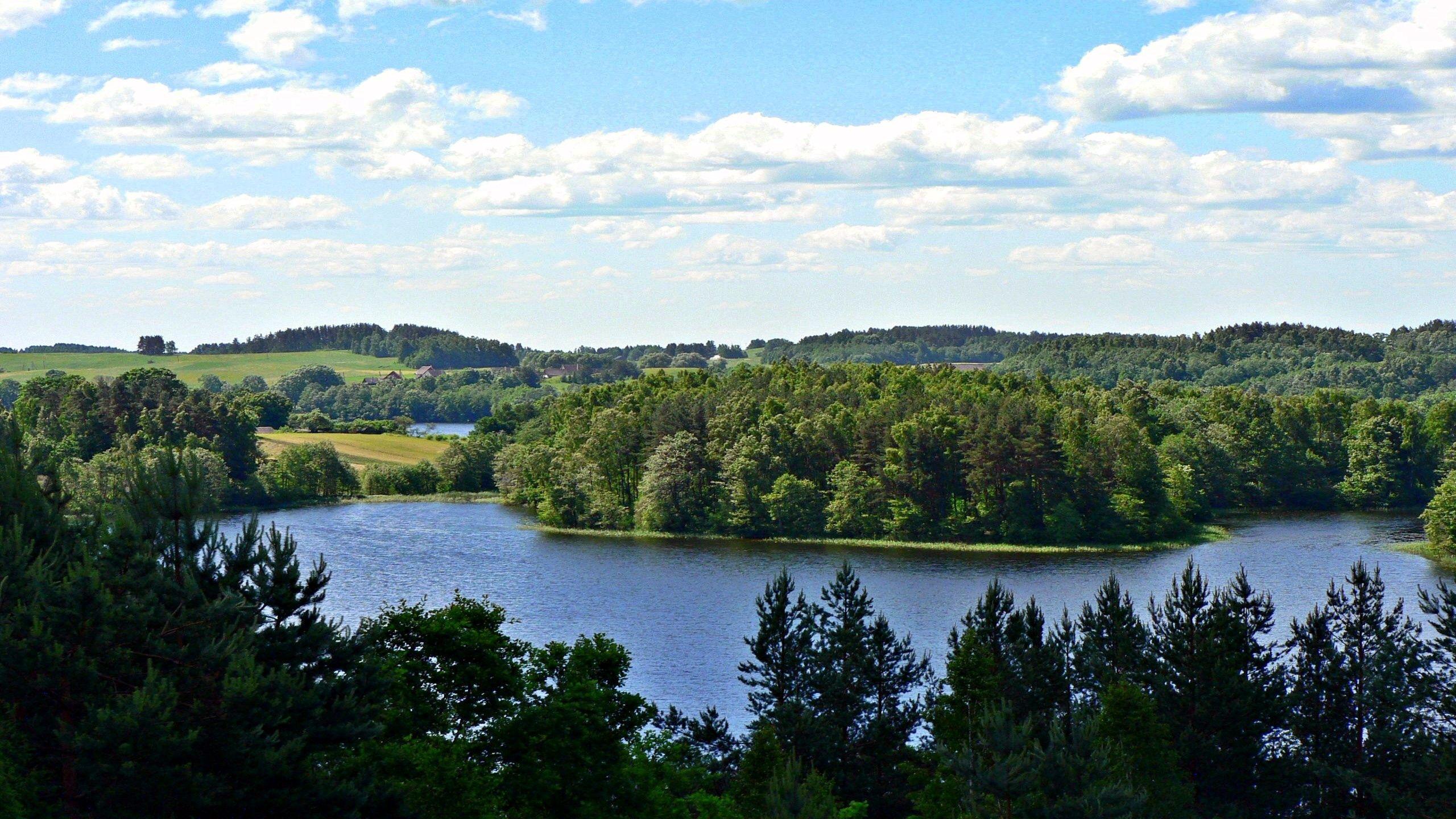 144042 скачать обои Река, Природа, Деревья, Трава, Лето, Красиво - заставки и картинки бесплатно
