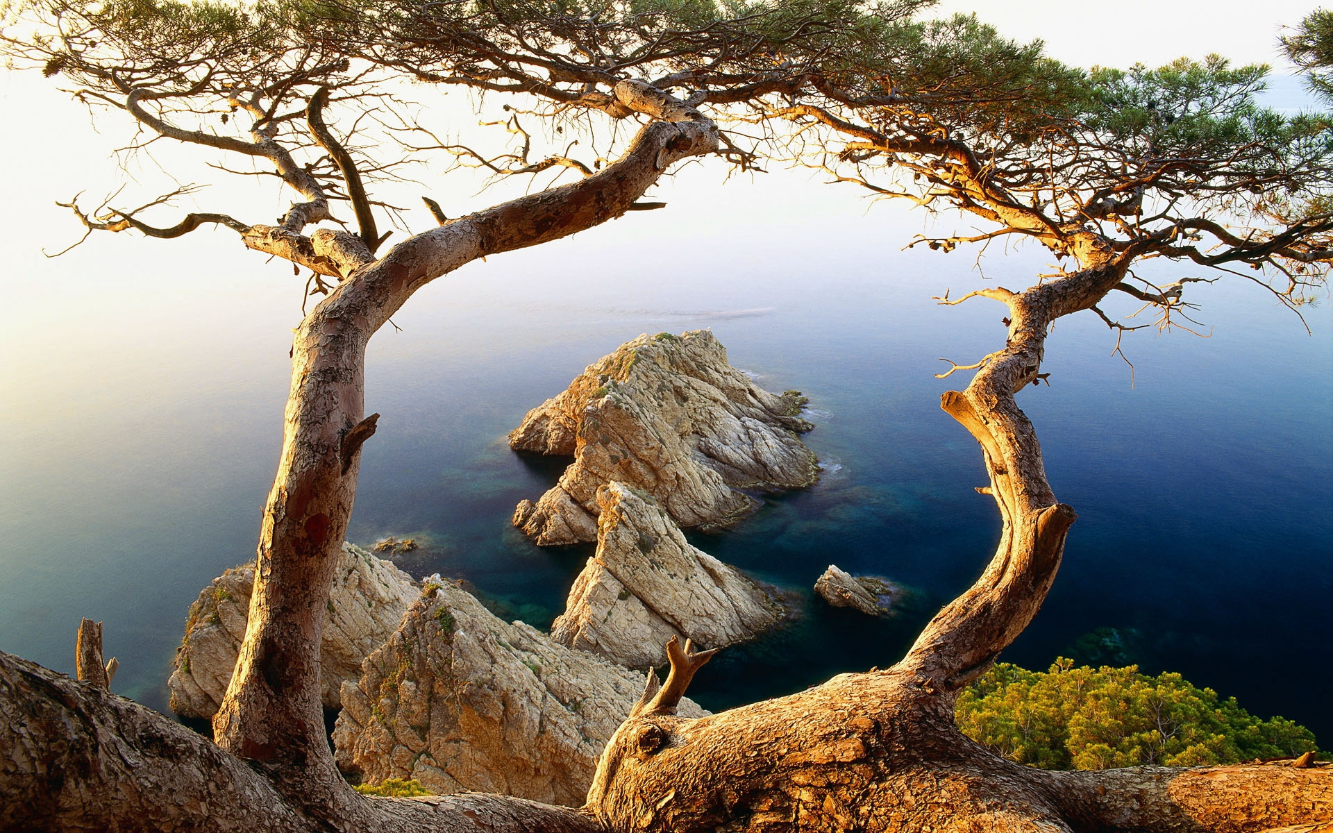32053 download wallpaper Landscape, Trees, Mountains, Sea screensavers and pictures for free