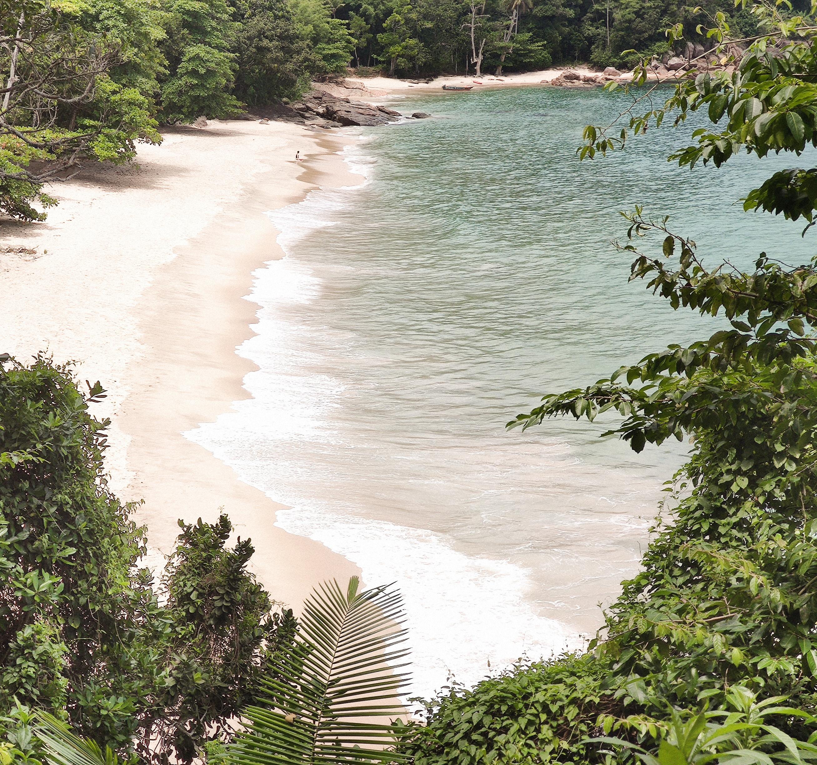 134723 скачать обои Природа, Пляж, Растения, Побережье, Экзотика - заставки и картинки бесплатно