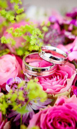 54192 Заставки и Обои Свадьба на телефон. Скачать Праздники, Букет, Свадьба, Розы, Кольца картинки бесплатно