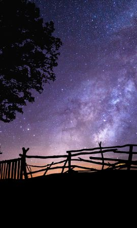 109636 Screensavers and Wallpapers Dark for phone. Download Dark, Starry Sky, Silhouette, Swing, Wood, Tree, Night pictures for free