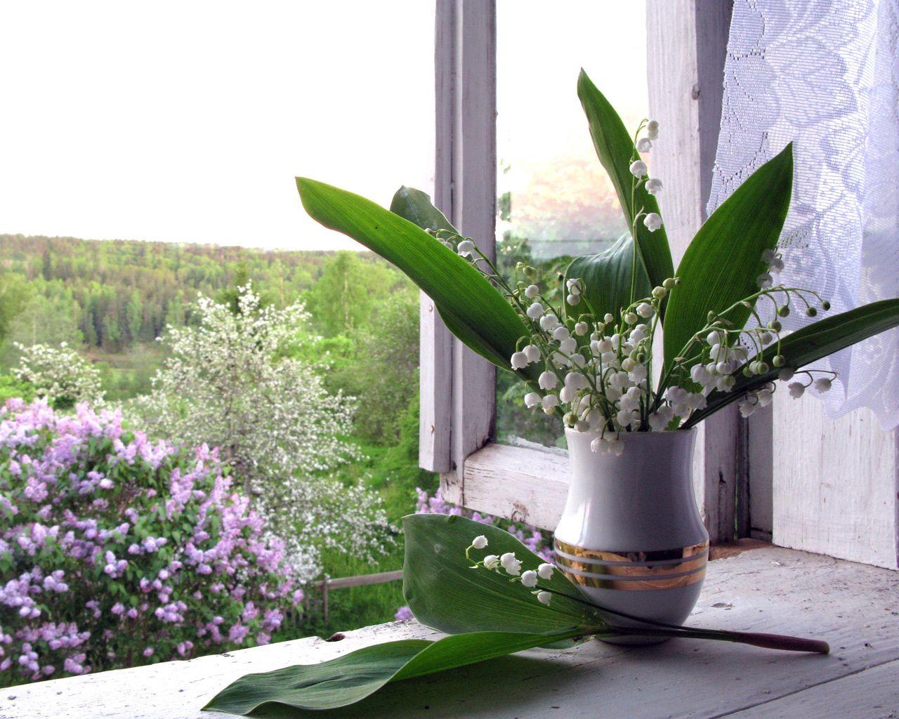 72121 Hintergrundbild herunterladen Blumen, Lilac, Maiglöckchen, Fenster, Vase, Fensterbrett, Fensterbank, Frühling - Bildschirmschoner und Bilder kostenlos