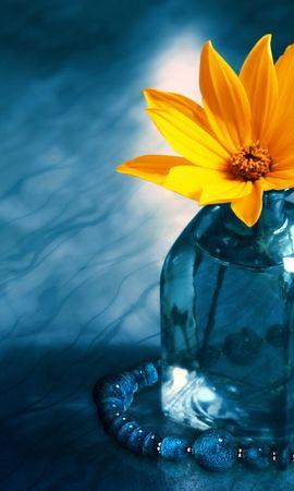 3668 скачать обои Растения, Цветы, Украшения, Объекты - заставки и картинки бесплатно
