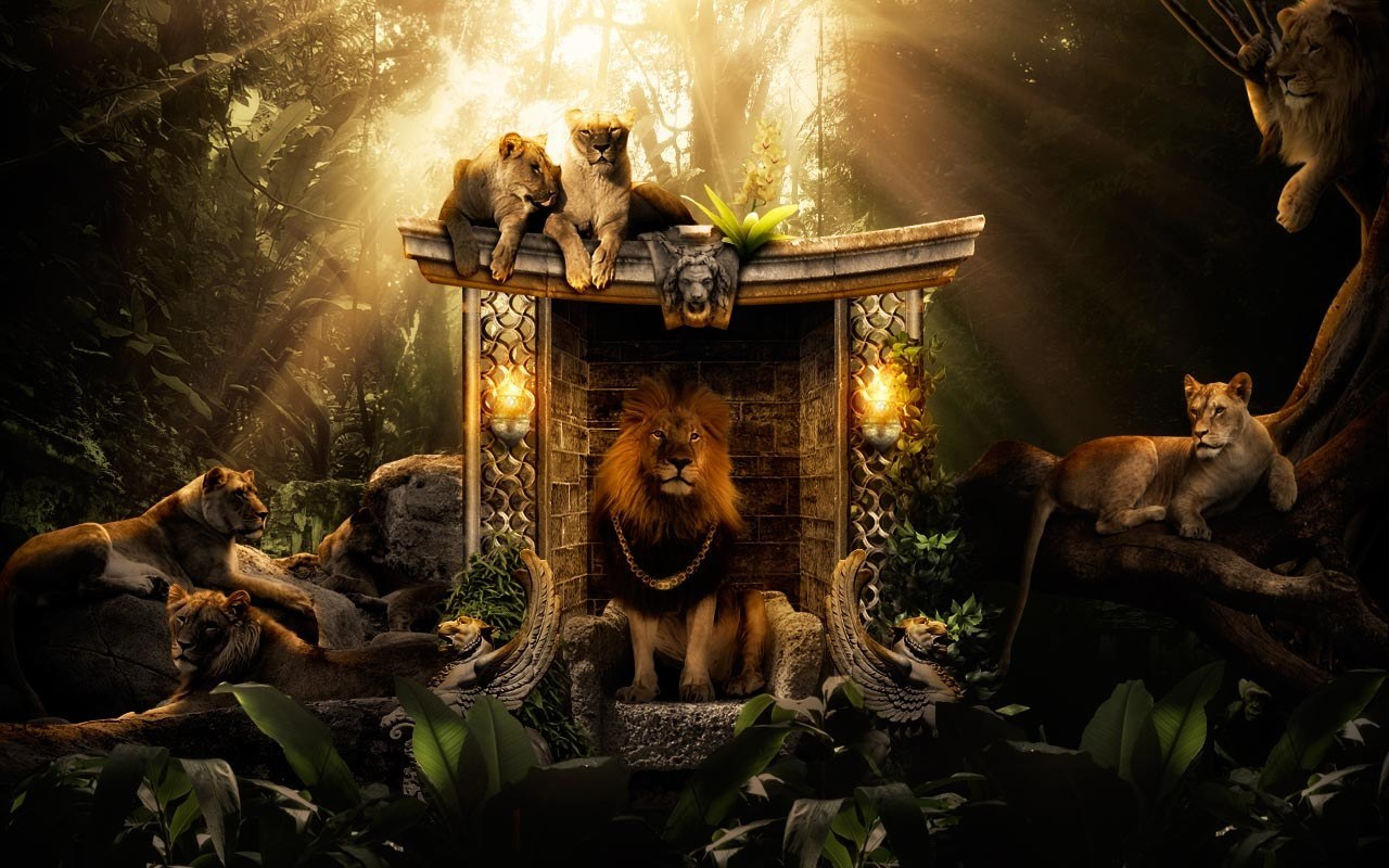 29336 download wallpaper Animals, Art Photo, Lions screensavers and pictures for free