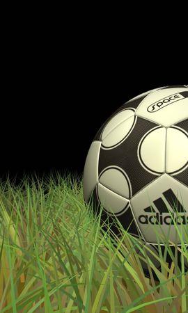 6988 descargar fondo de pantalla Deportes, Hierba, Fútbol: protectores de pantalla e imágenes gratis
