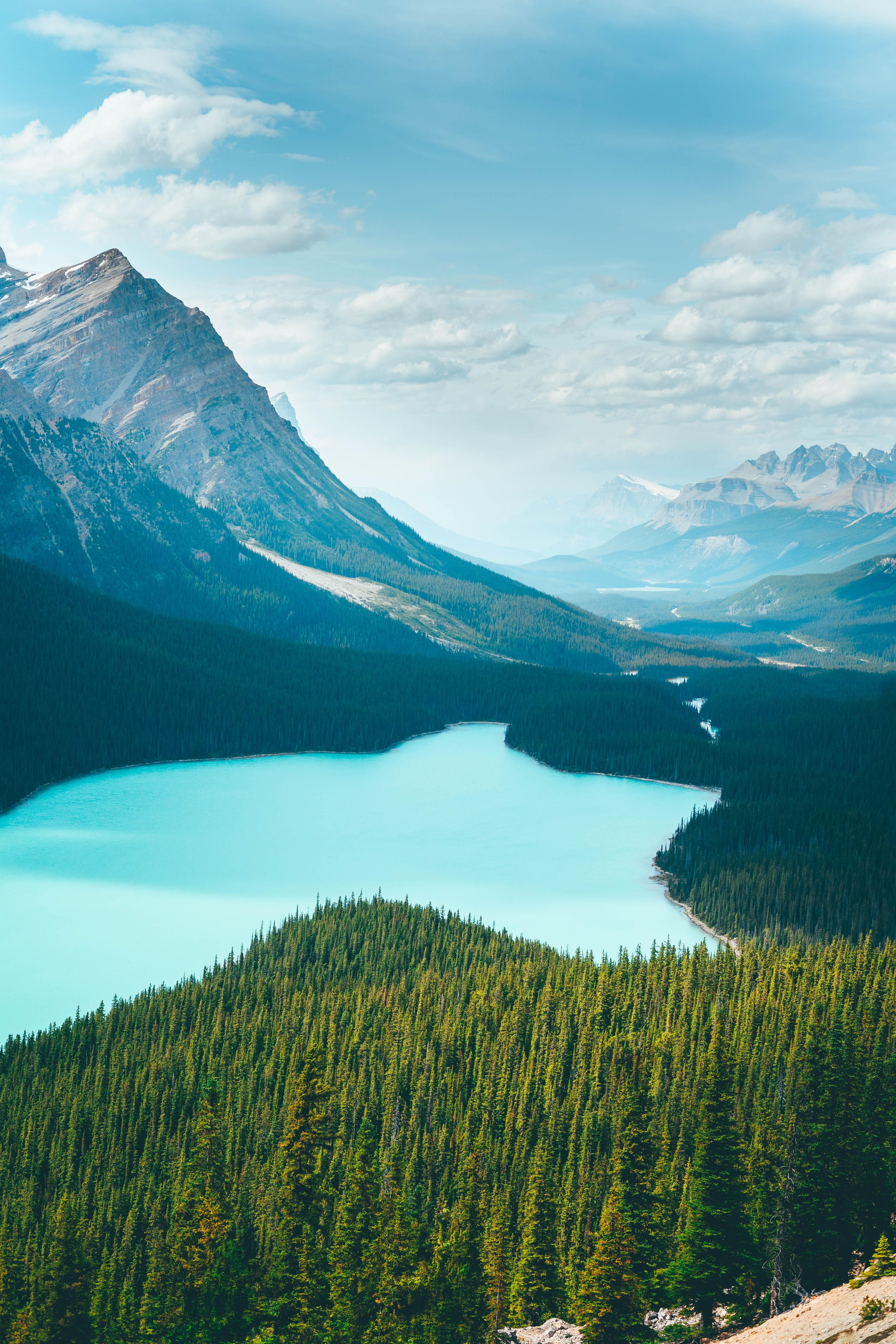 151331 скачать обои Лес, Вода, Природа, Деревья, Горы, Озеро - заставки и картинки бесплатно