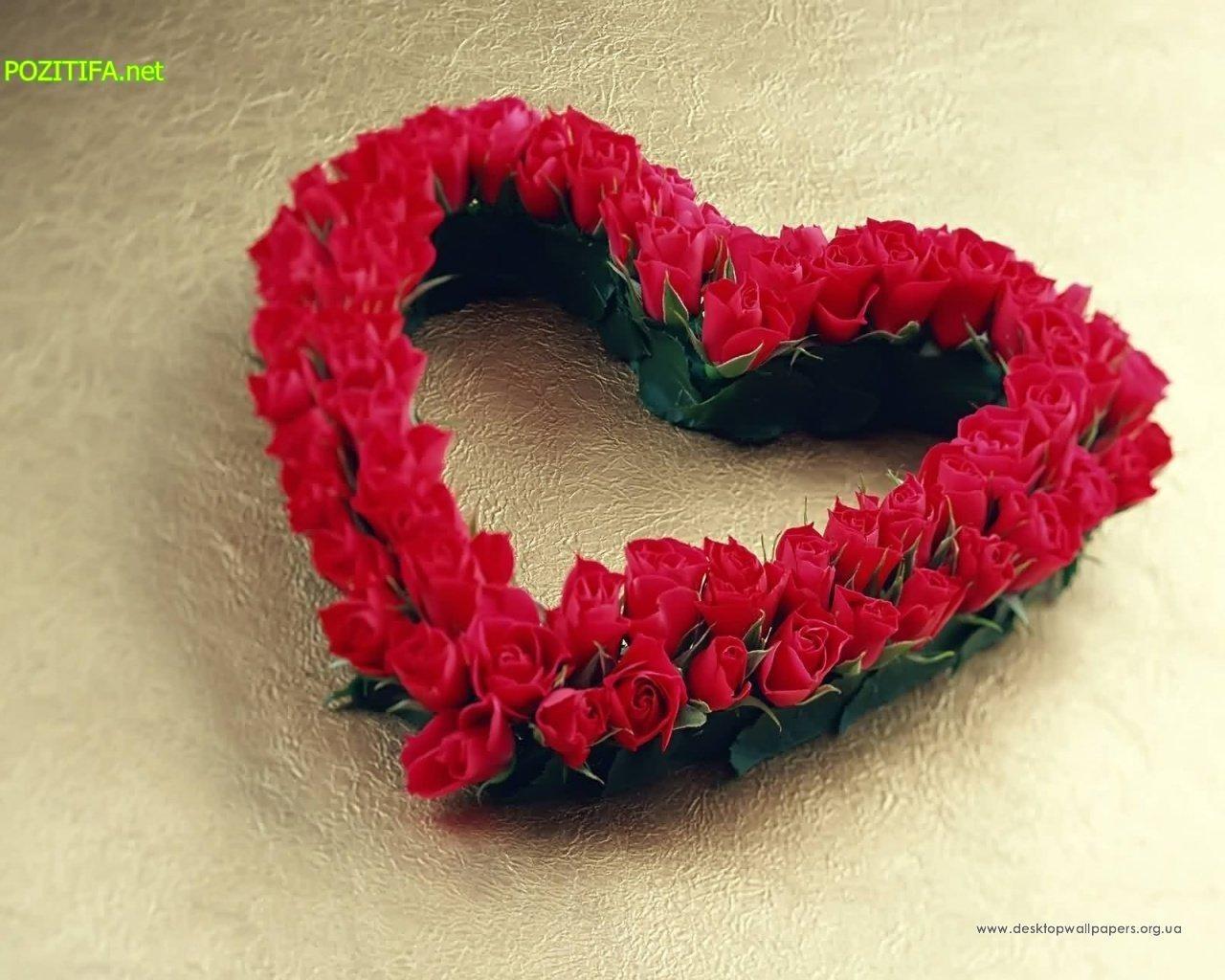 2872 скачать обои Растения, Розы, Сердца, Любовь, День Святого Валентина (Valentine's Day), Открытки - заставки и картинки бесплатно