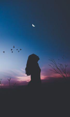 143191 baixar papel de parede Escuro, Menina, Garota, Silhueta, Noite, Lua, Harmonia, Solidão, Aves - protetores de tela e imagens gratuitamente