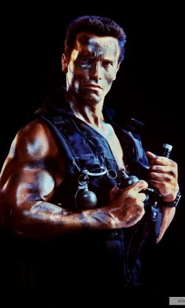 21447 download wallpaper Cinema, People, Actors, Men, Arnold Schwarzenegger screensavers and pictures for free