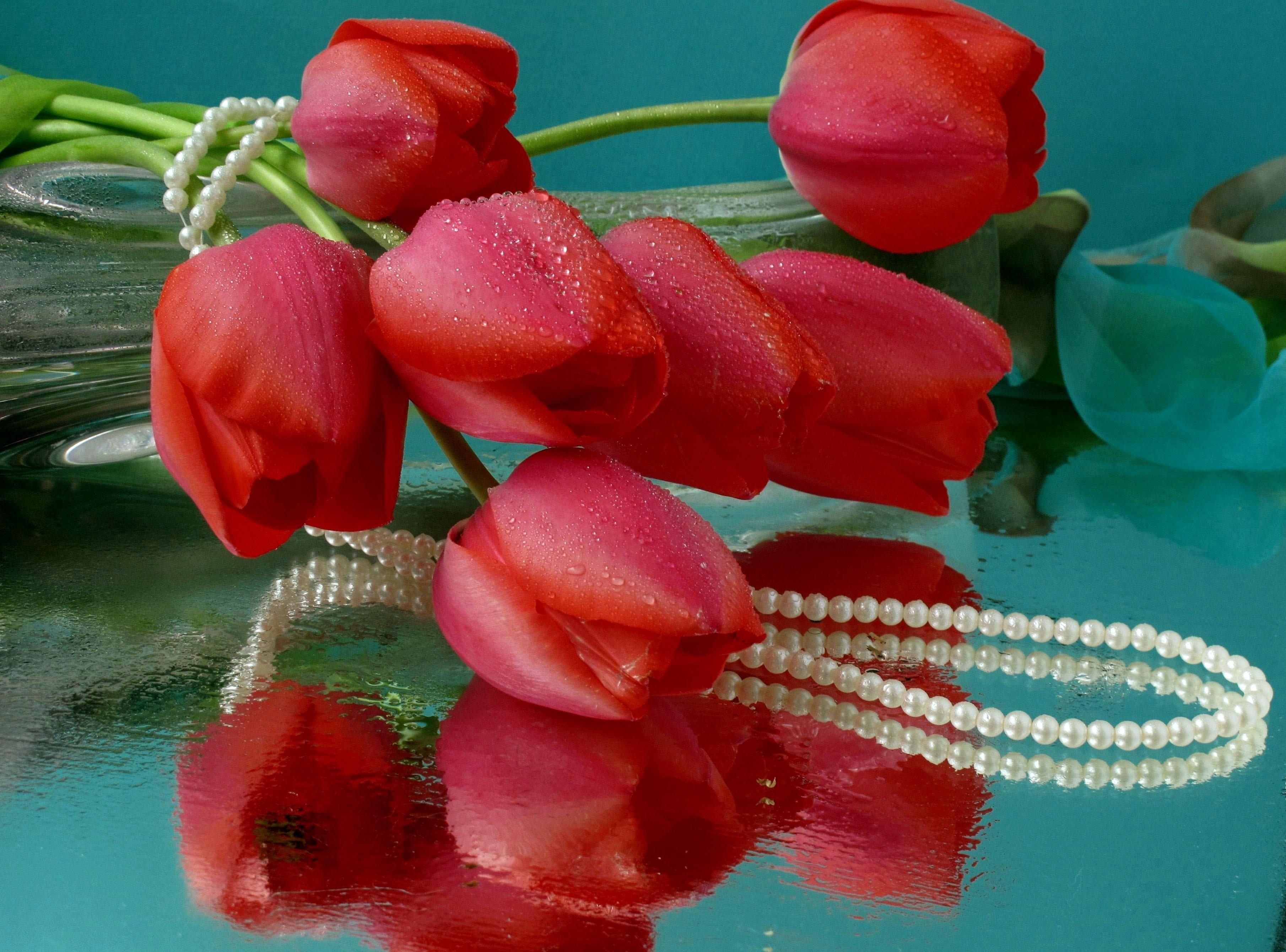 68955 скачать обои Цветы, Ваза, Лежать, Бусы, Капли, Вода, Отражение, Тюльпаны - заставки и картинки бесплатно