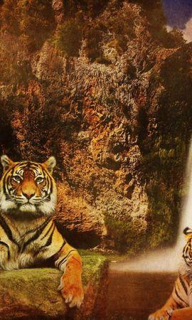 63932壁紙のダウンロード動物, 滝, 背景, 猫, 水, 岩, 捕食者, 捕食 者, 山脈, 阪神タイガース-スクリーンセーバーと写真を無料で