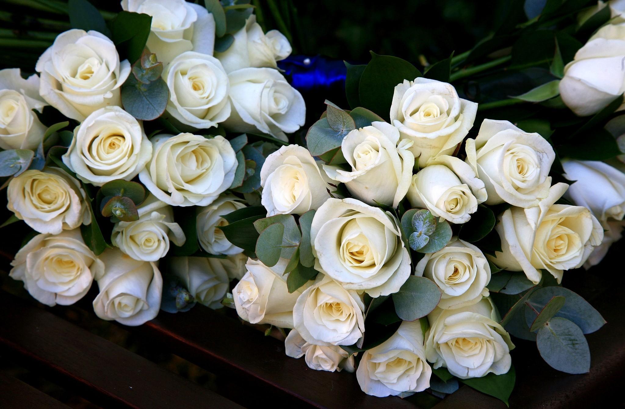 106426 télécharger le fond d'écran Fleurs, Joliment, C'est Beau, Roses, Bouquets - économiseurs d'écran et images gratuitement