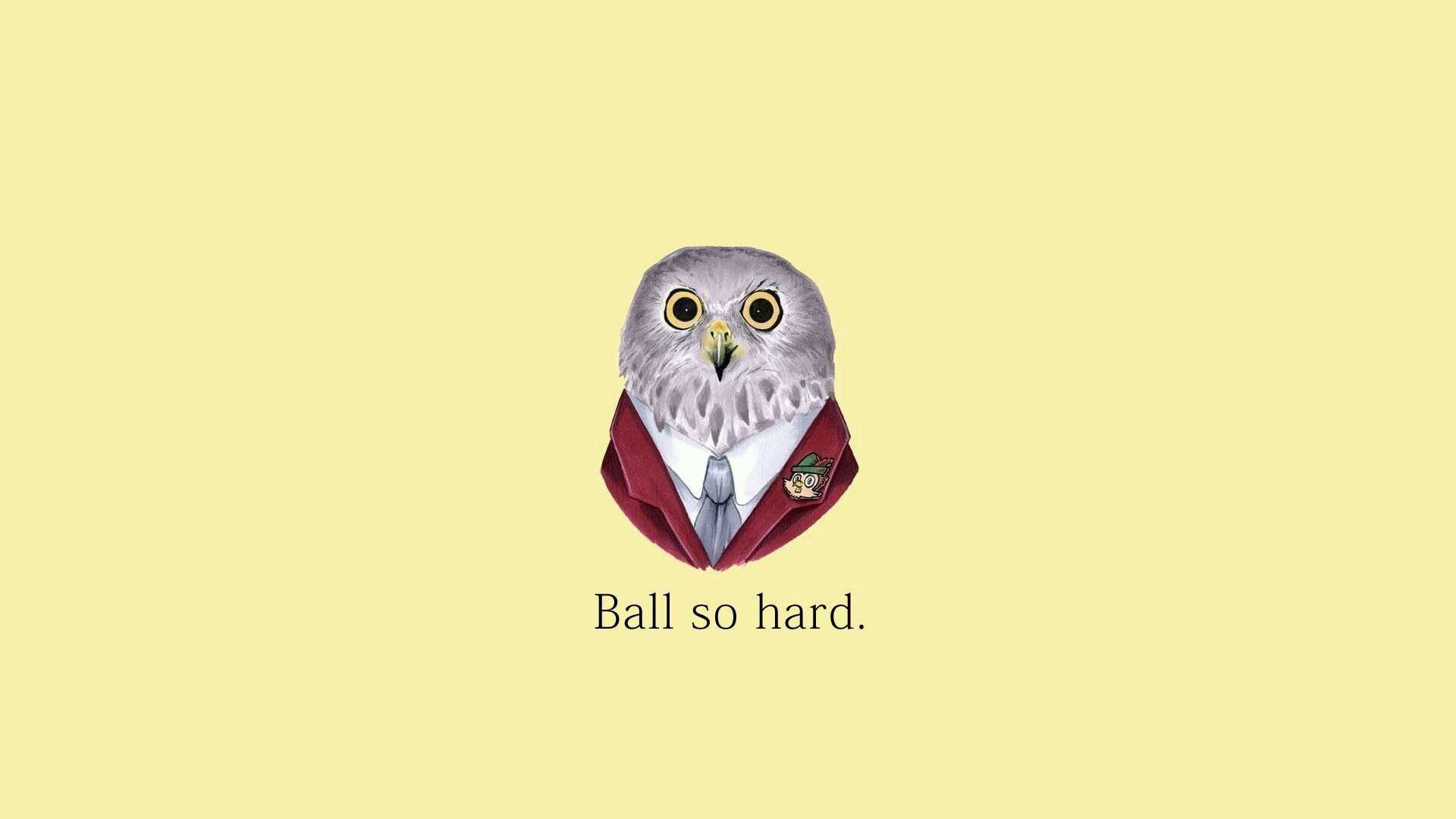 143001 download wallpaper Vector, Owl, Picture, Drawing, Eyes, Background screensavers and pictures for free