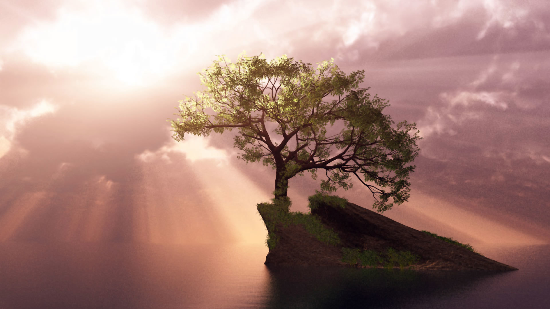 46139 скачать обои Пейзаж, Деревья - заставки и картинки бесплатно
