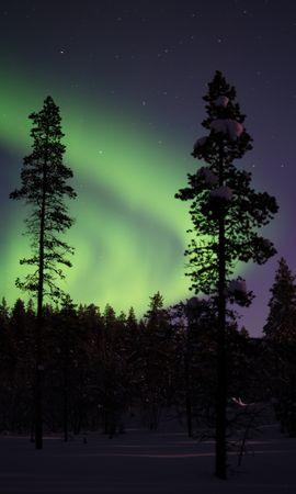121513 télécharger le fond d'écran Nature, Aurores Boréales, Aurore Boréale, Aurore, Arbres, Neige, Forêt, Nuit, Couvert De Neige, Snowbound - économiseurs d'écran et images gratuitement