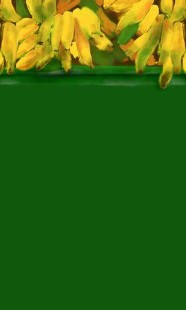 15468 скачать обои Фрукты, Еда, Фон, Бананы - заставки и картинки бесплатно