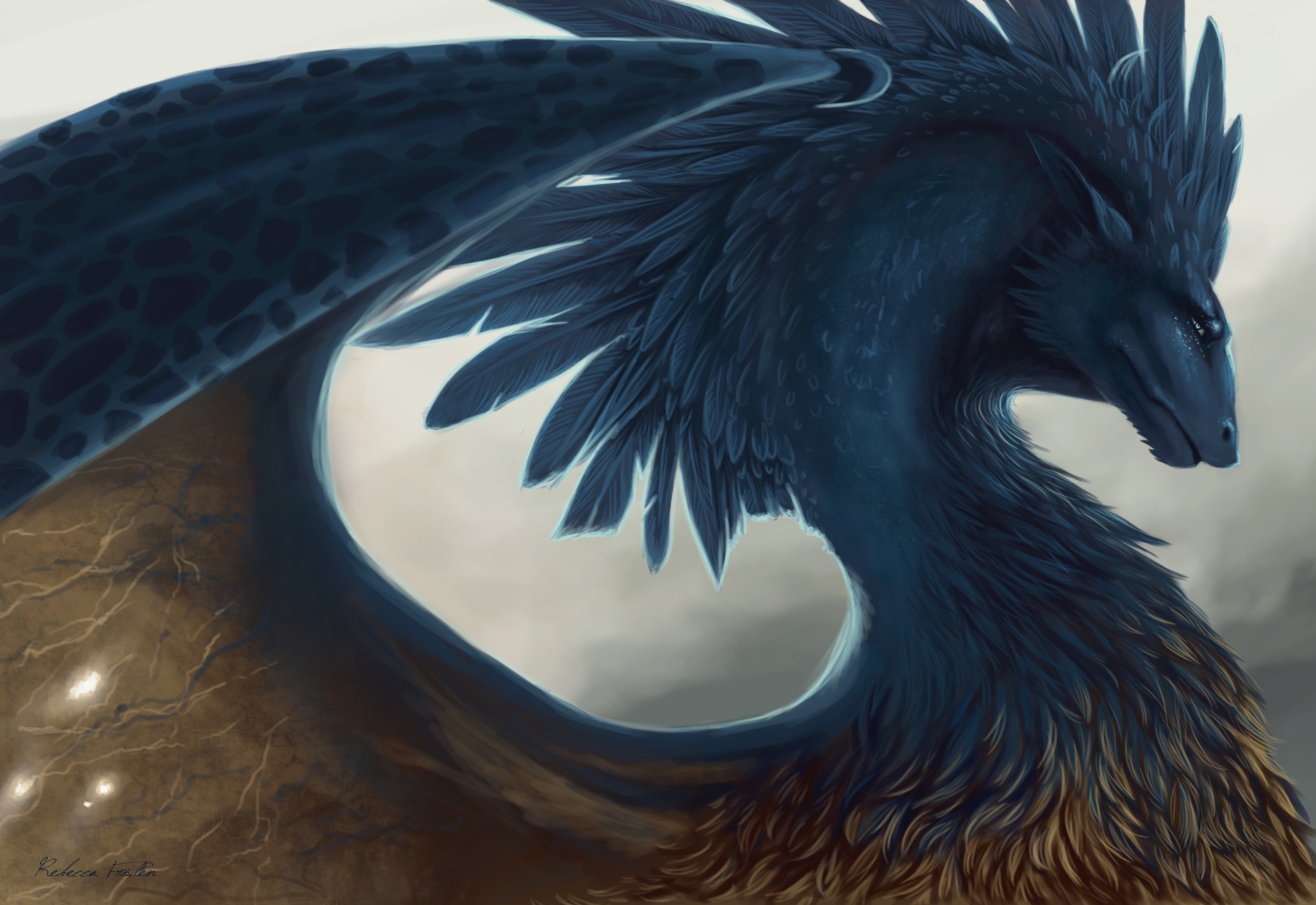 111626 download wallpaper Dragon, Fantasy, Art, Feather screensavers and pictures for free
