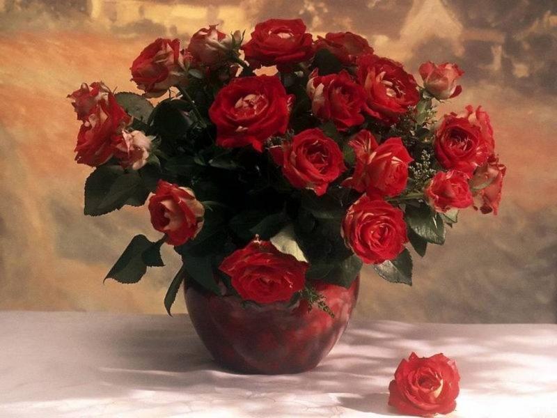41465 скачать обои Растения, Пейзаж, Цветы, Розы, Рисунки - заставки и картинки бесплатно
