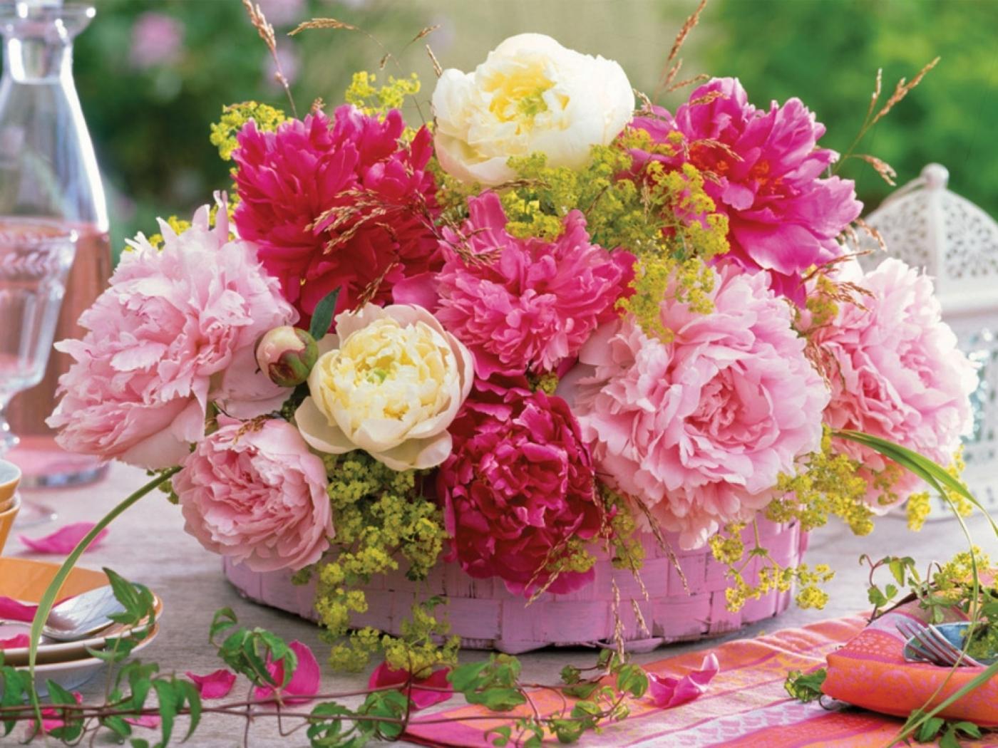 44283 скачать обои Растения, Цветы - заставки и картинки бесплатно
