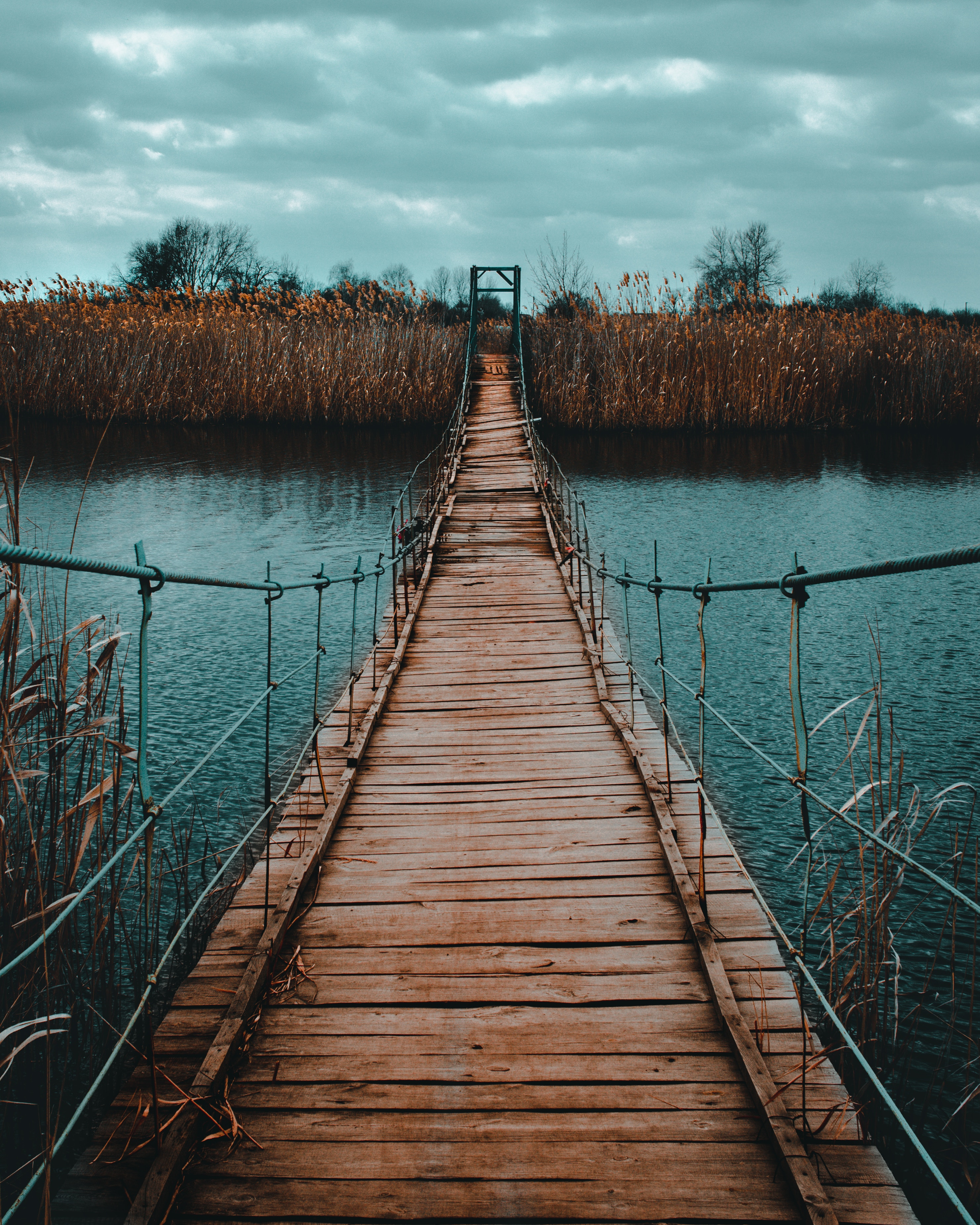 50475 Screensavers and Wallpapers Wooden for phone. Download Wooden, Nature, Rivers, Shore, Bank, Wood, Bridge, Suspension, Hanging, Cable, Funicular pictures for free