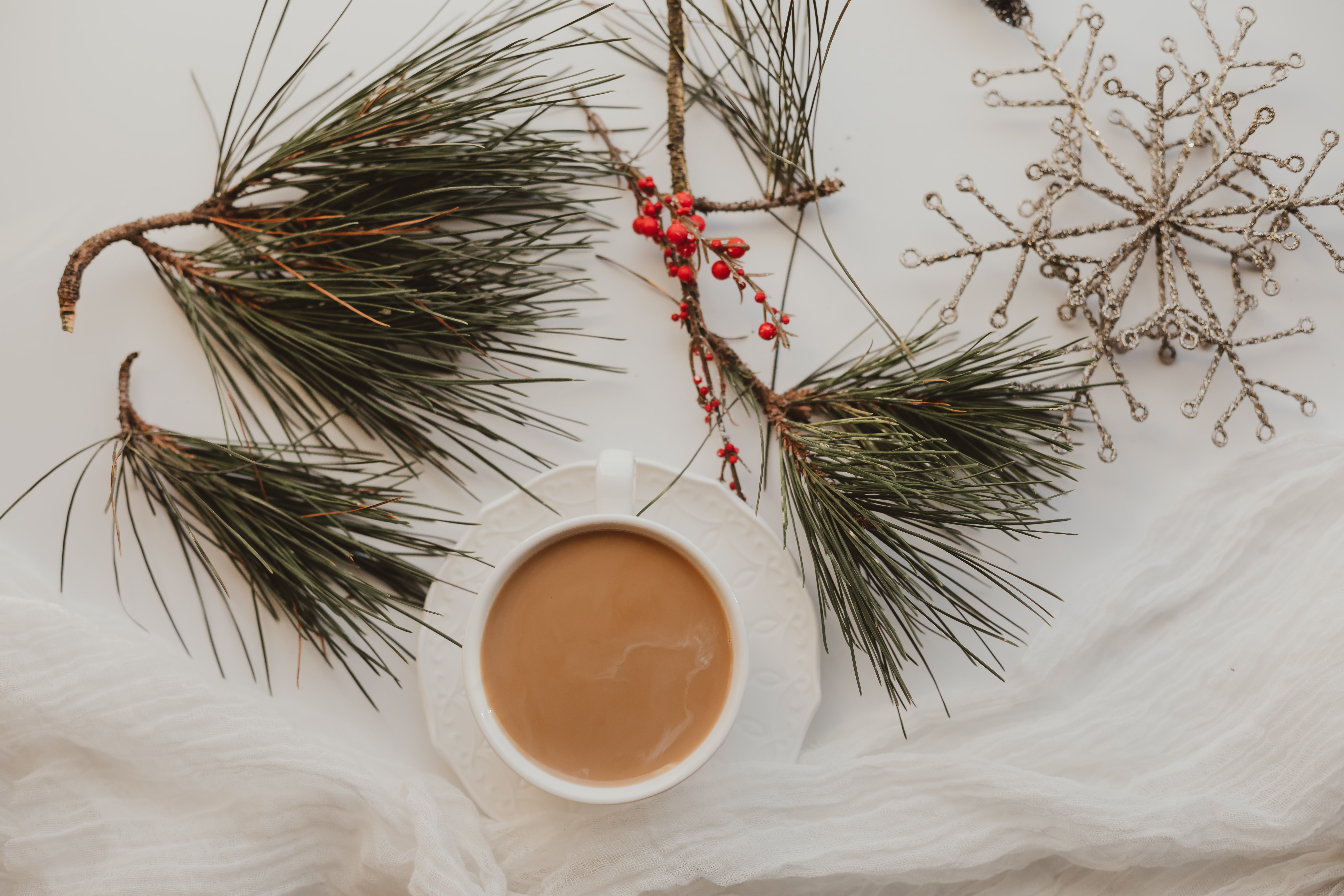 152175 download wallpaper Food, Cup, Coffee, Branches, Needles, Berries screensavers and pictures for free