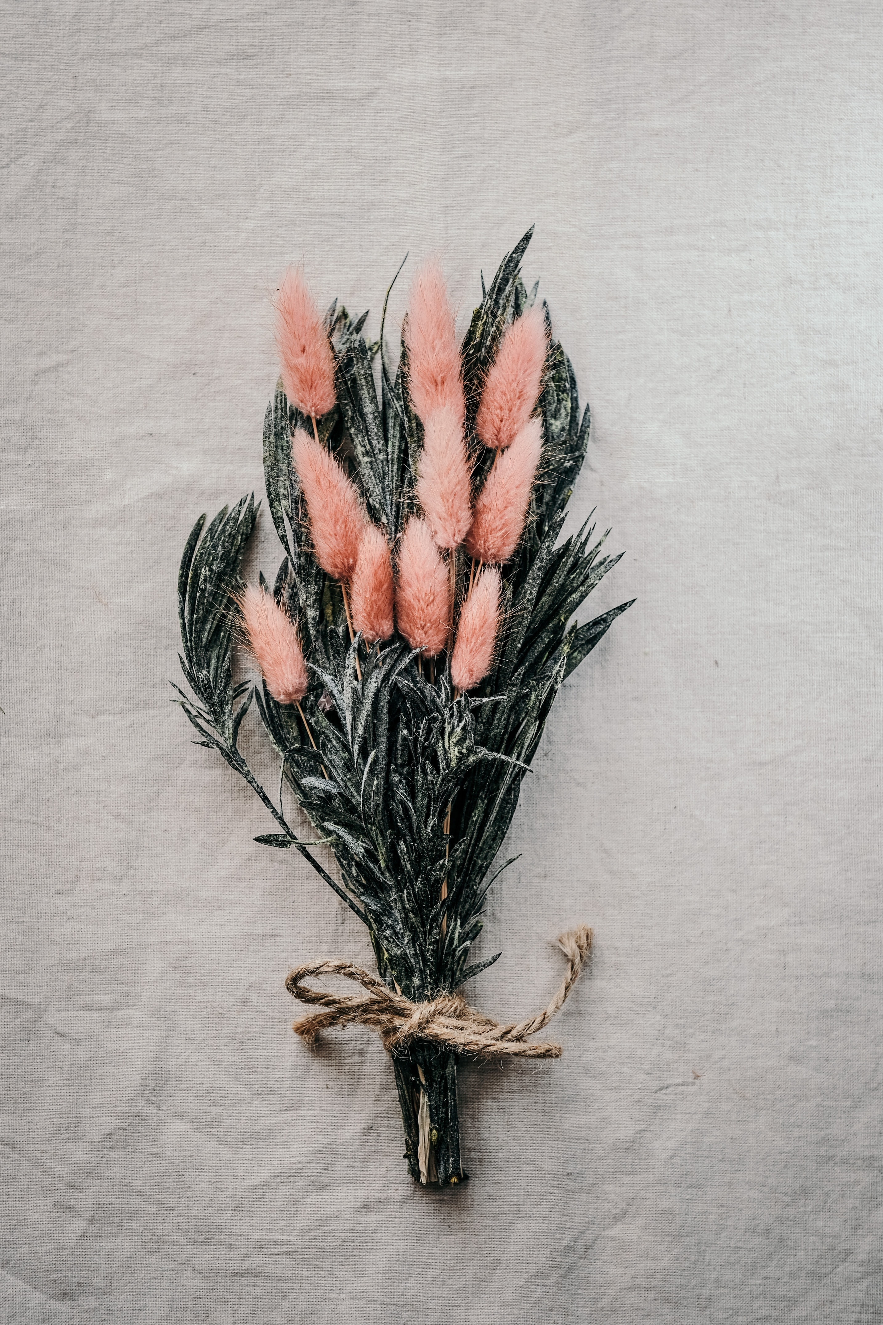 139471 Screensavers and Wallpapers Cones for phone. Download Flowers, Cones, Fluffy, Bouquet, Spikelets pictures for free