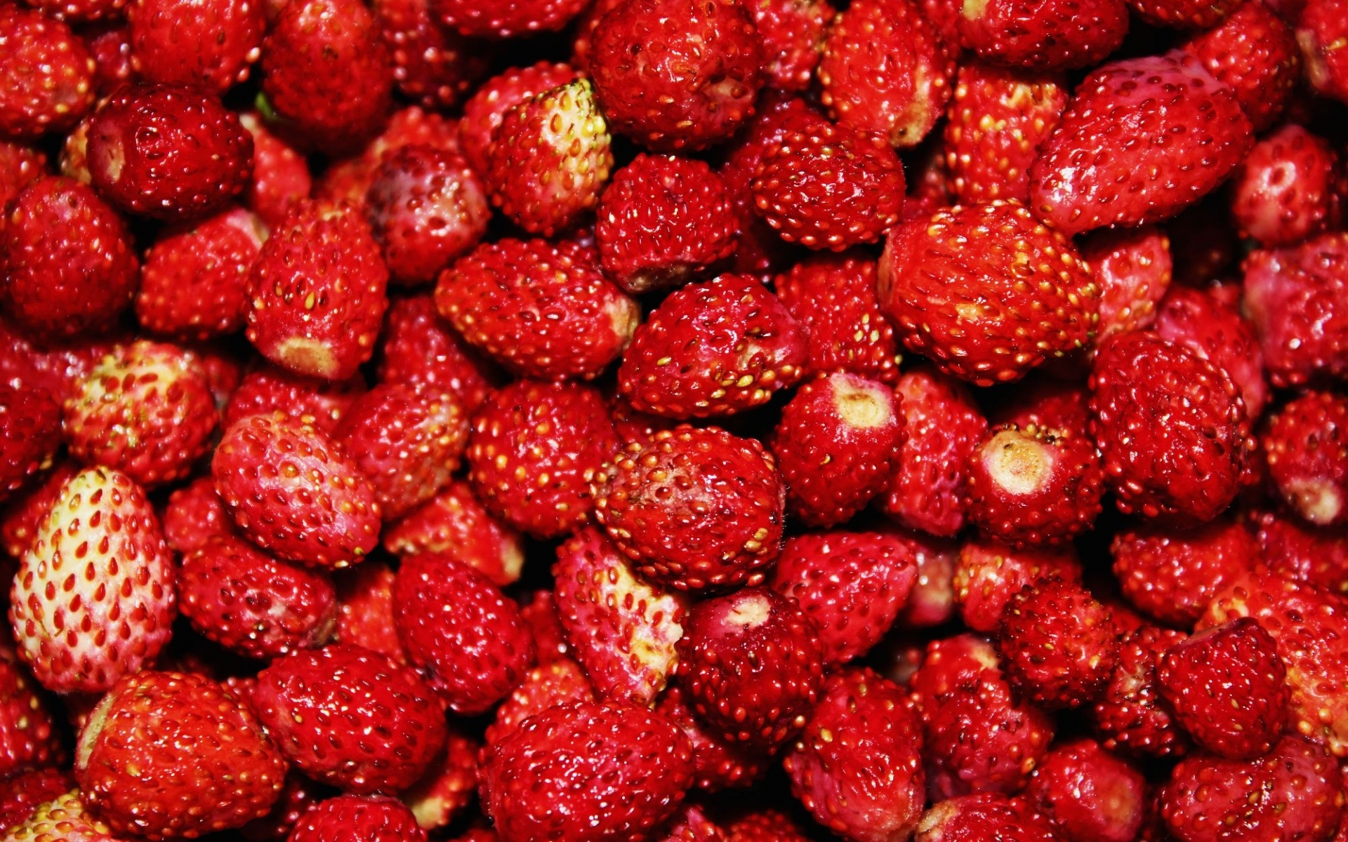 41460 download wallpaper Strawberry, Background screensavers and pictures for free