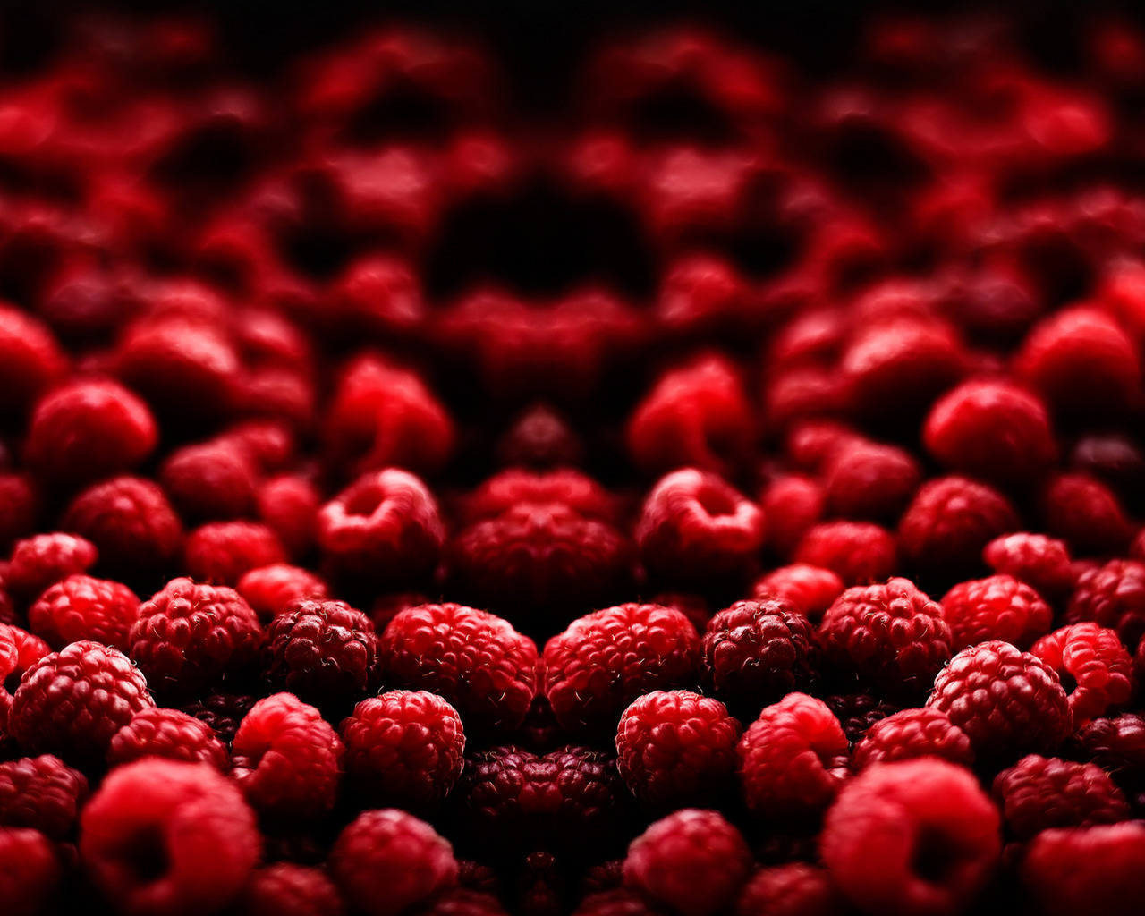 10066 download wallpaper Food, Background, Raspberry, Berries screensavers and pictures for free