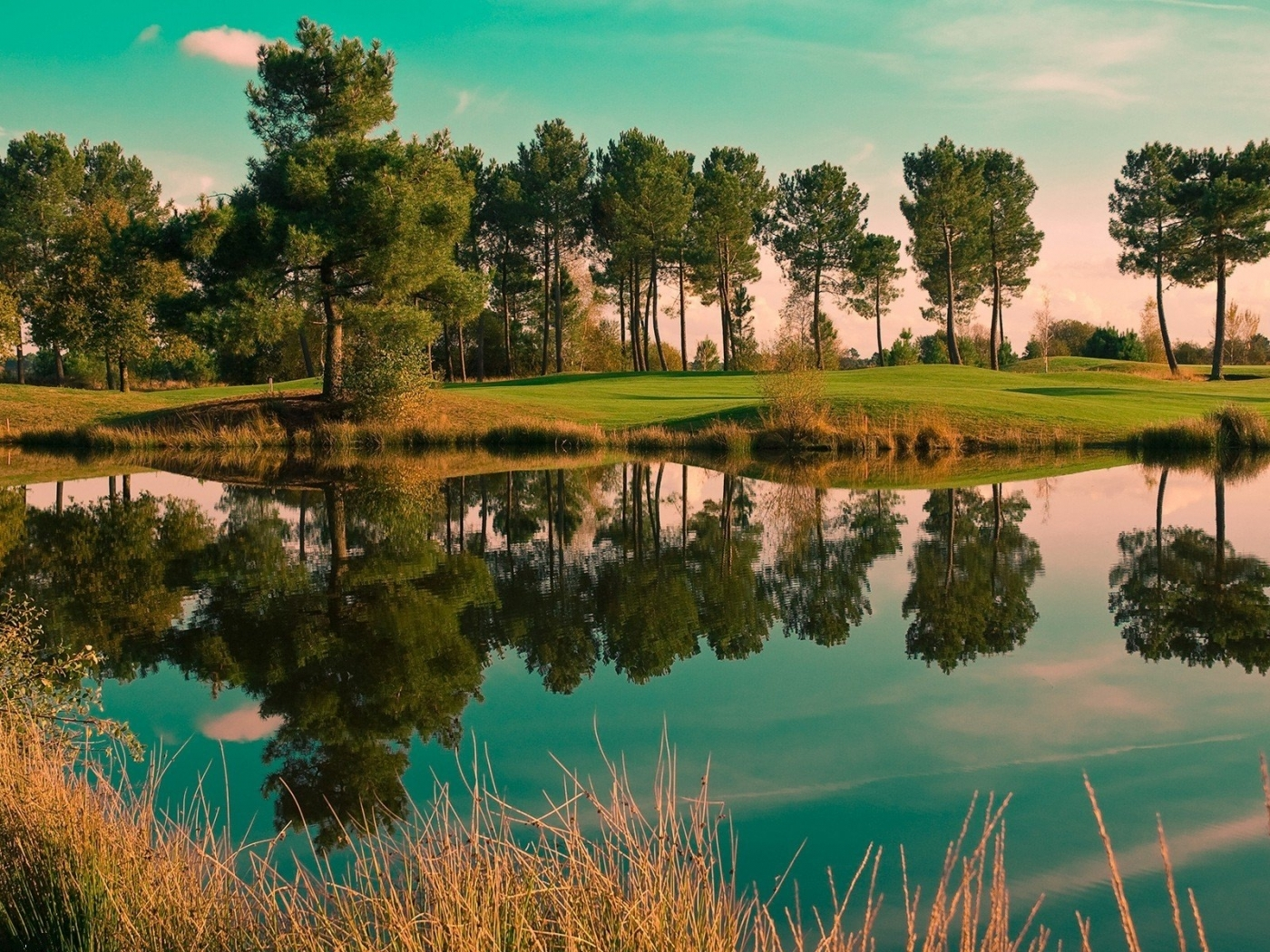 48316 download wallpaper Landscape, Nature, Trees, Lakes screensavers and pictures for free