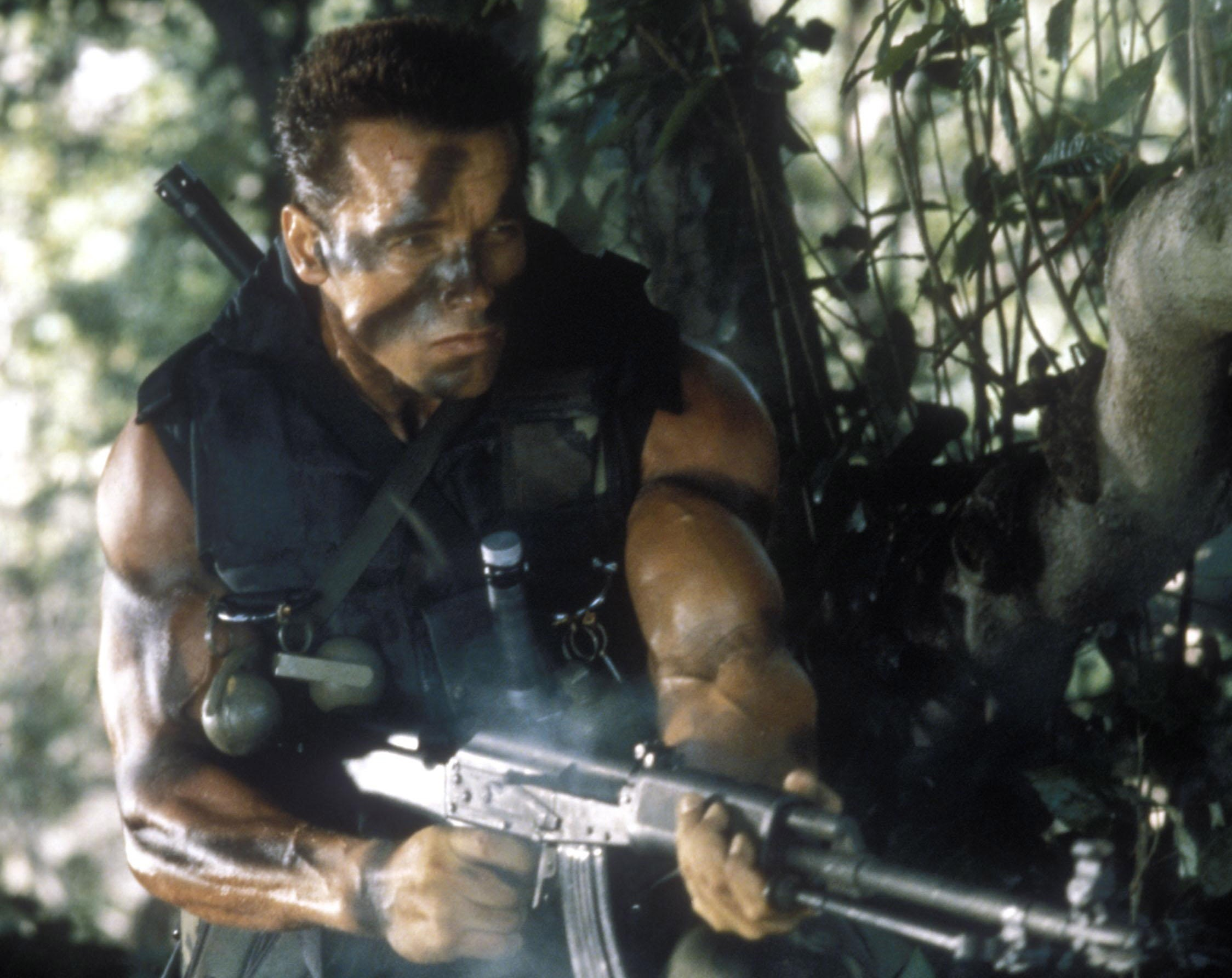 20593 download wallpaper Cinema, People, Actors, Men, Arnold Schwarzenegger screensavers and pictures for free