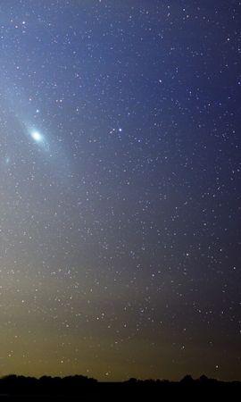 21787 скачать обои Пейзаж, Деревья, Небо, Звезды, Ночь - заставки и картинки бесплатно
