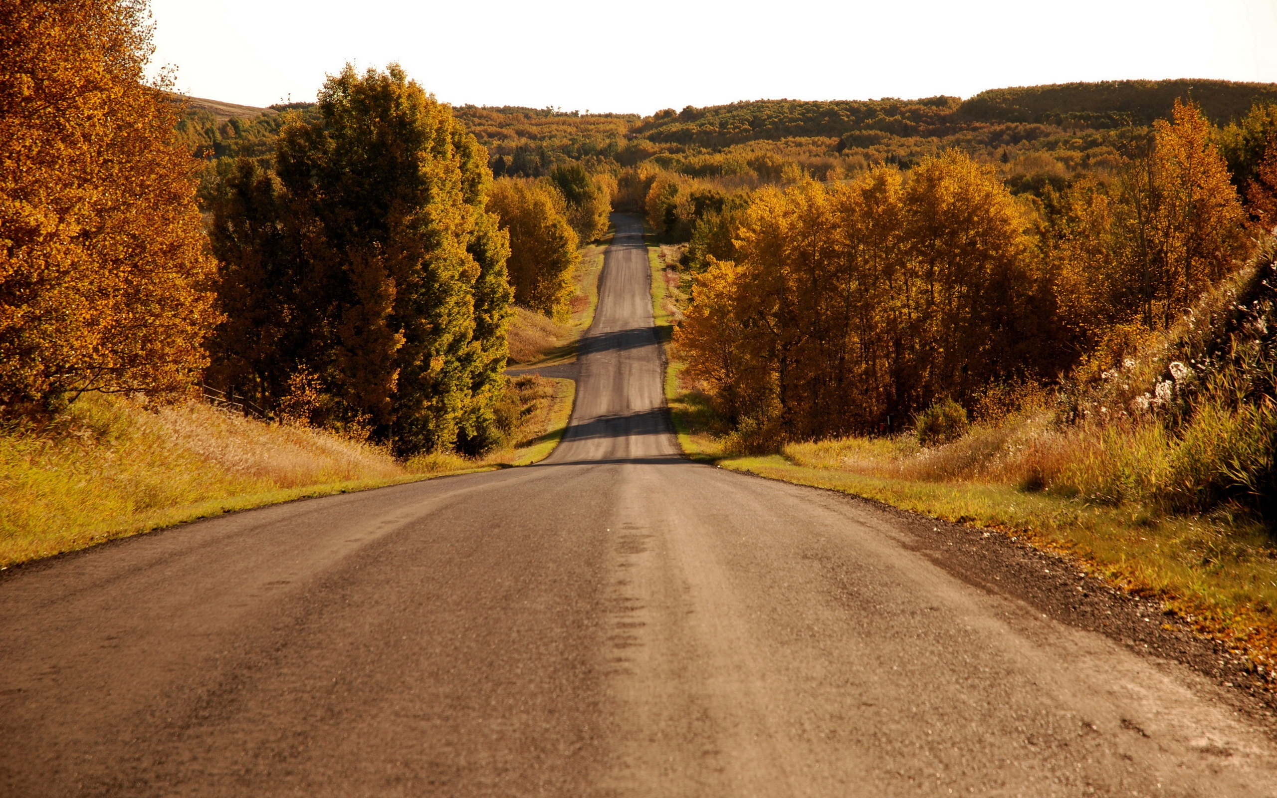 36772 скачать обои Пейзаж, Дороги, Осень - заставки и картинки бесплатно