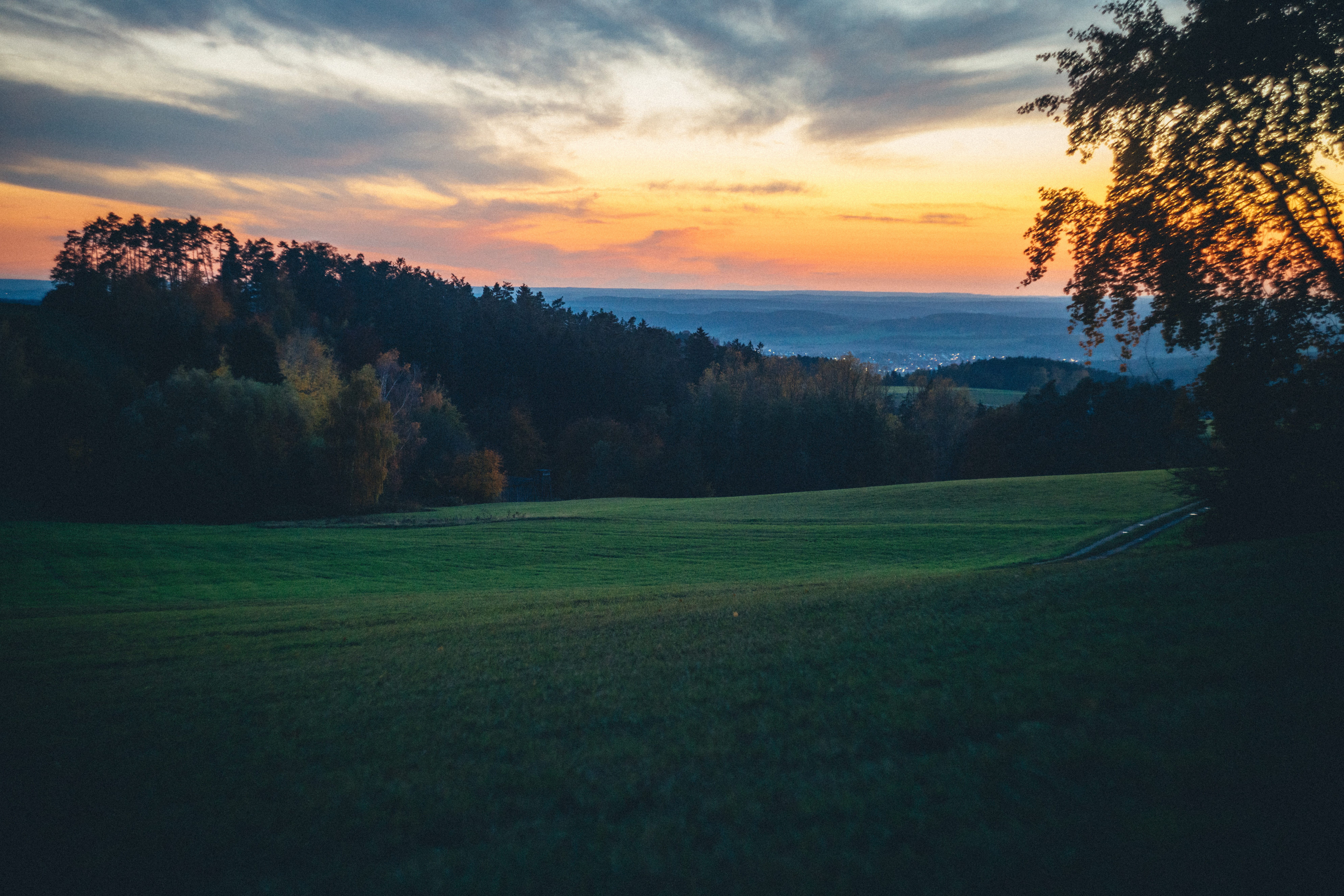 103002 Hintergrundbild 240x400 kostenlos auf deinem Handy, lade Bilder Landschaft, Natur, Bäume, Feld, Dämmerung, Twilight, Die Hügel, Hügel 240x400 auf dein Handy herunter