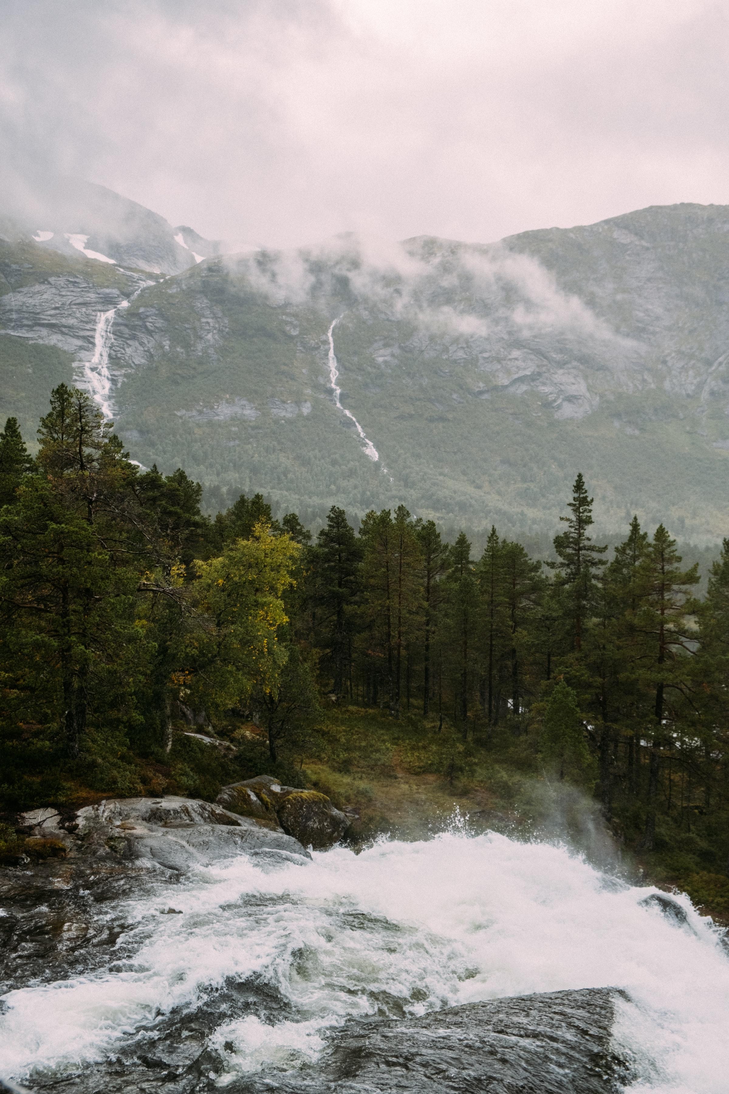 146349 скачать обои Природа, Река, Водопад, Ель, Деревья, Горы - заставки и картинки бесплатно