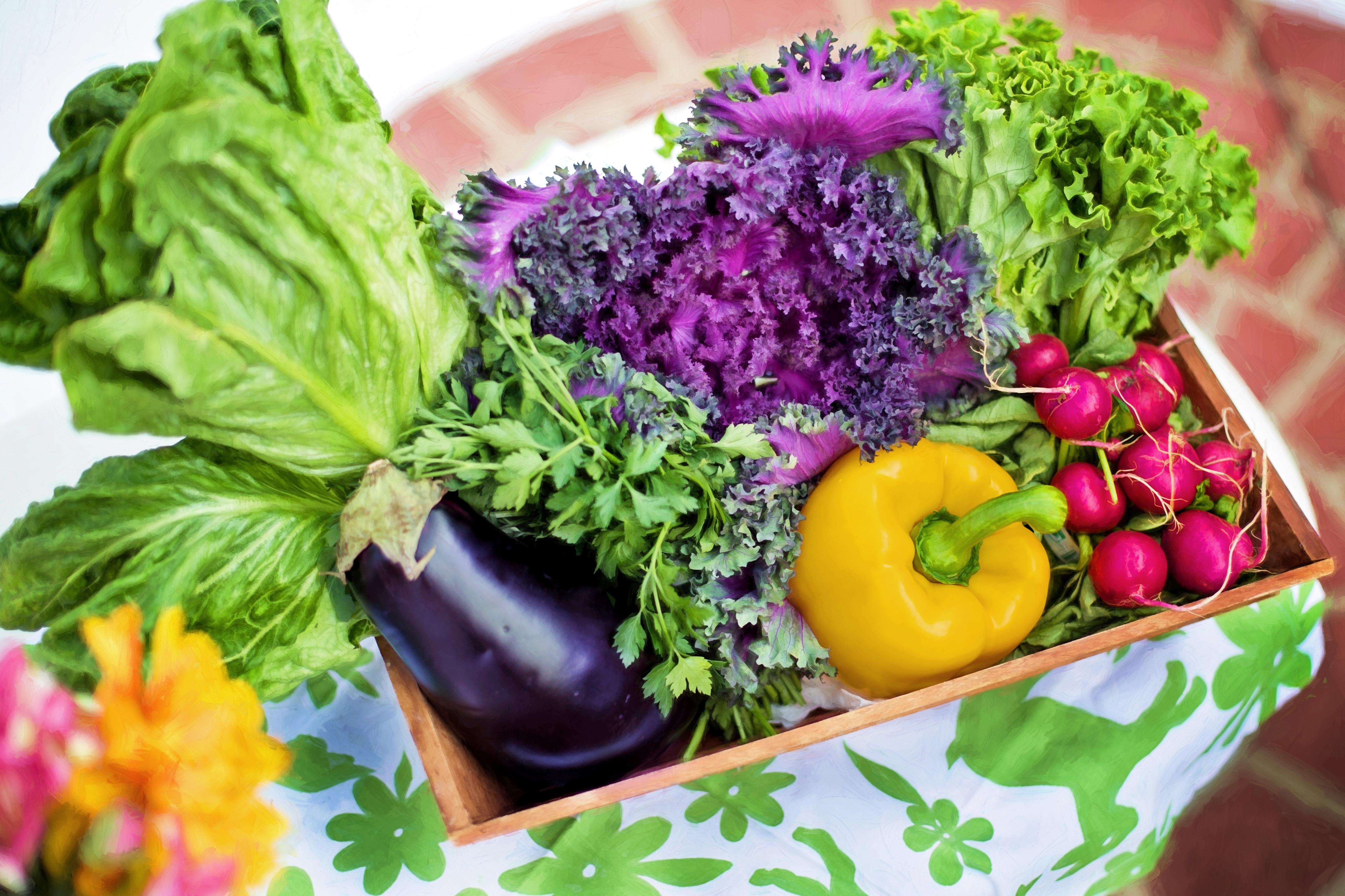 57203 Заставки и Обои Овощи на телефон. Скачать Еда, Овощи, Зелень, Корзина картинки бесплатно