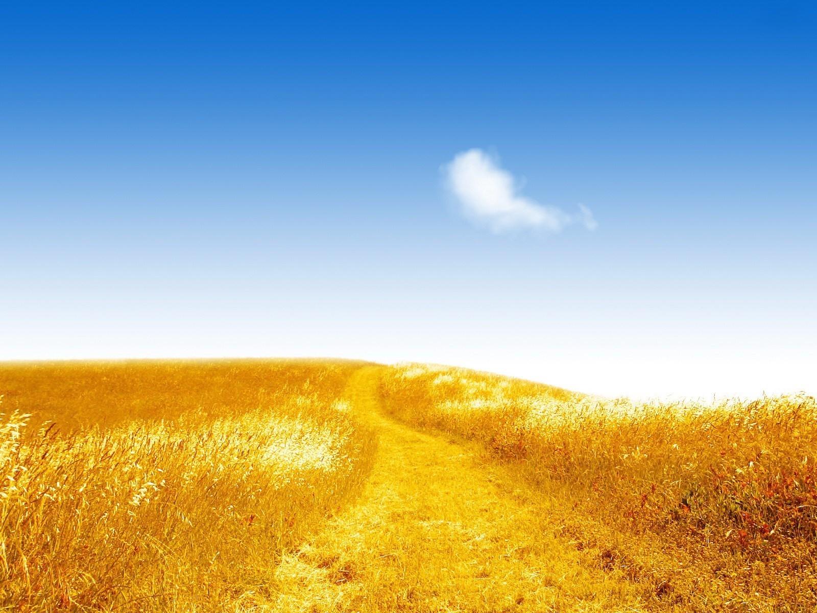 20747 скачать обои Пейзаж, Поля, Небо, Дороги - заставки и картинки бесплатно