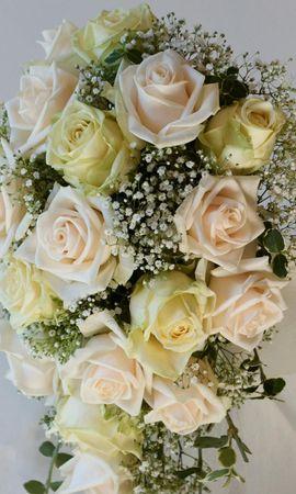 73842 скачать обои Цветы, Гипсофил, Букет, Нежность, Розы - заставки и картинки бесплатно
